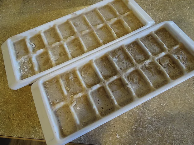 2_ice trays.png