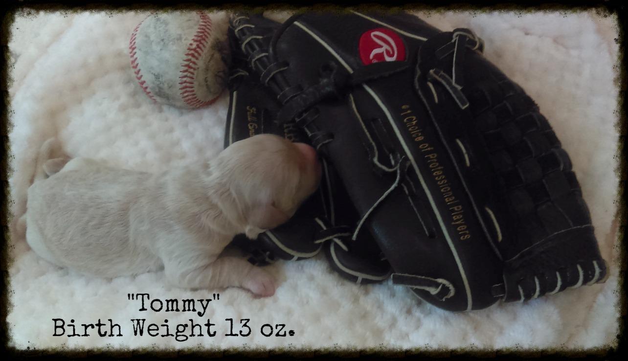 Tommy_Birth Weight_2.jpg