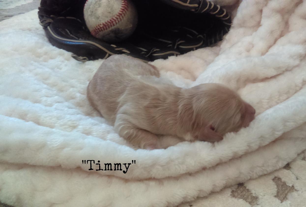 Timmy_Birth Weight_2.jpg