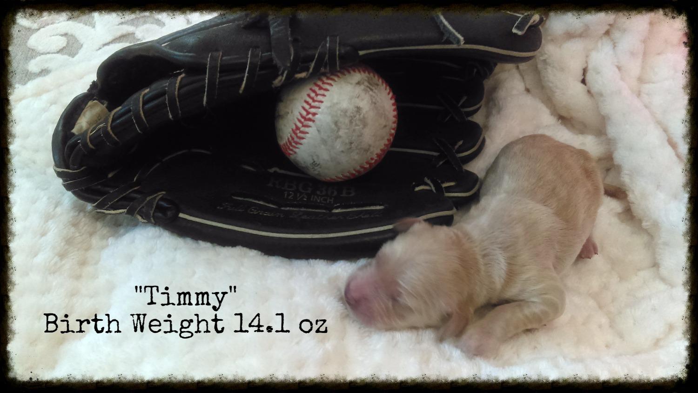 Timmy_Birth Weight_1.jpg