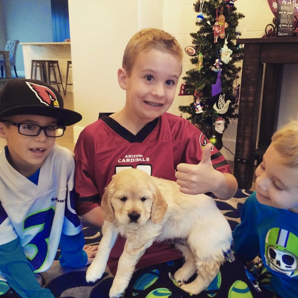 Christmas morning 2014- Mike and Natalie's handsome boys with Maverick!