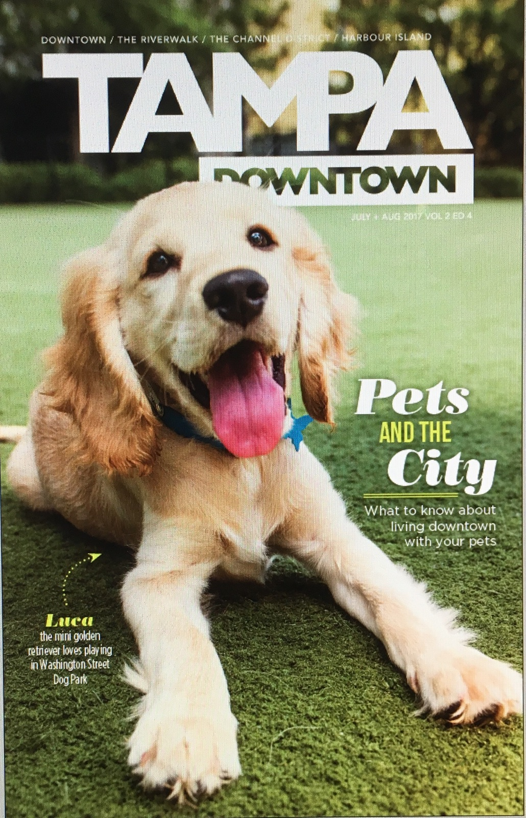 Luca - on the cover of South Tampa Magazine.jpg
