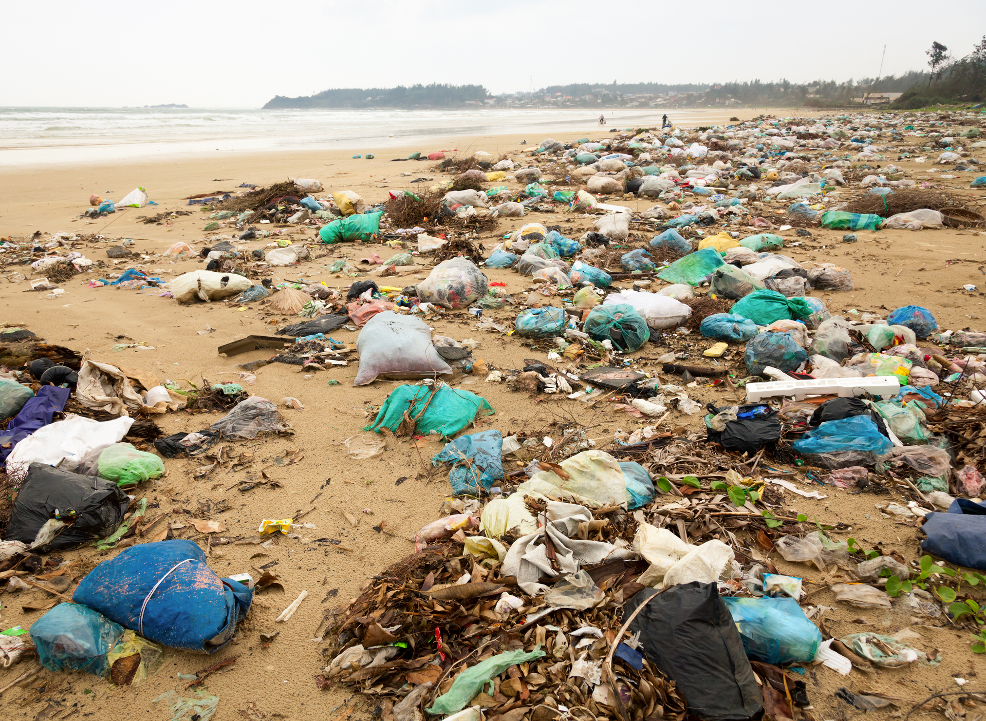 Aktiv für unsere Umwelt -