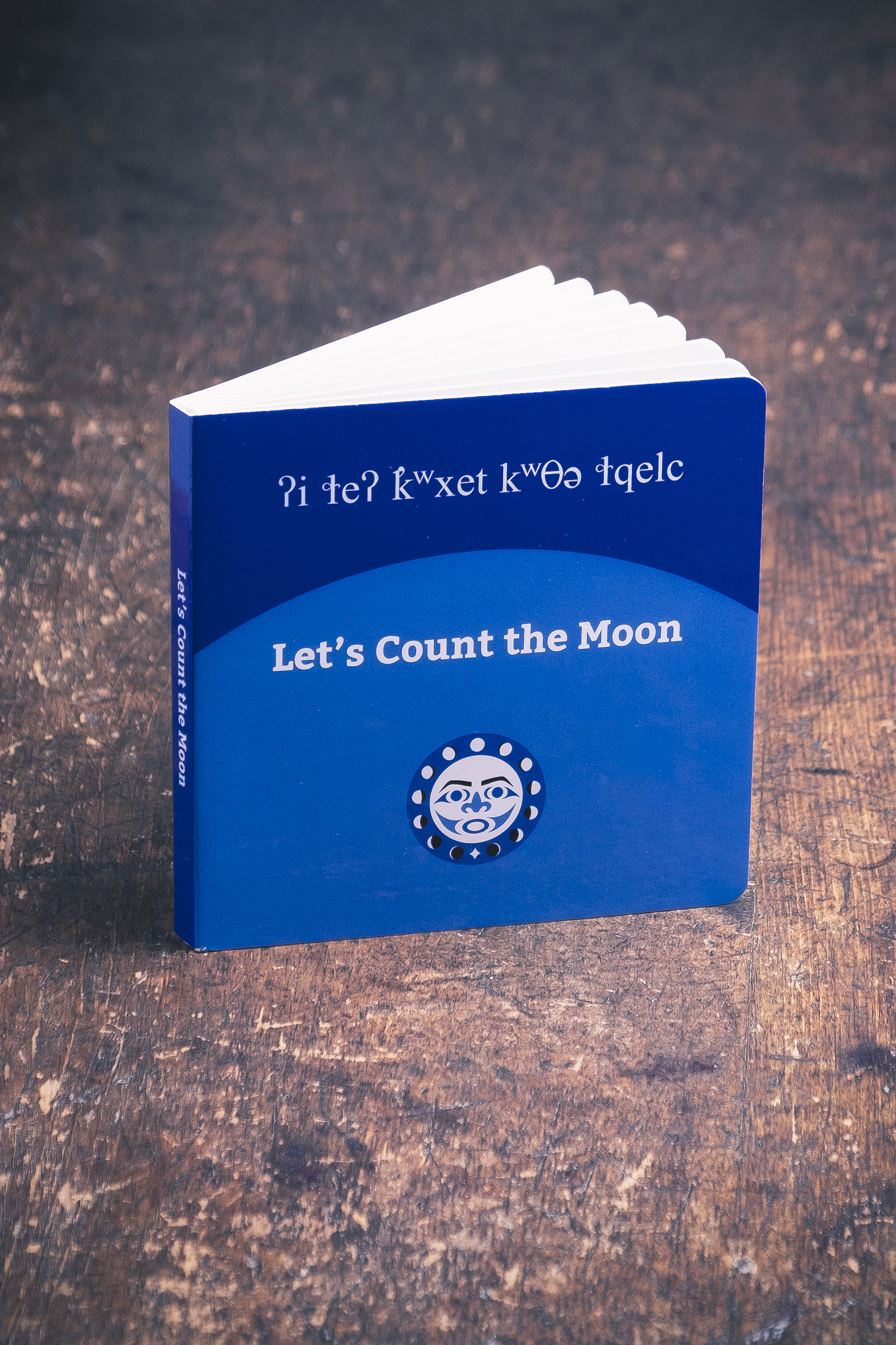 Let's Count the Moon book