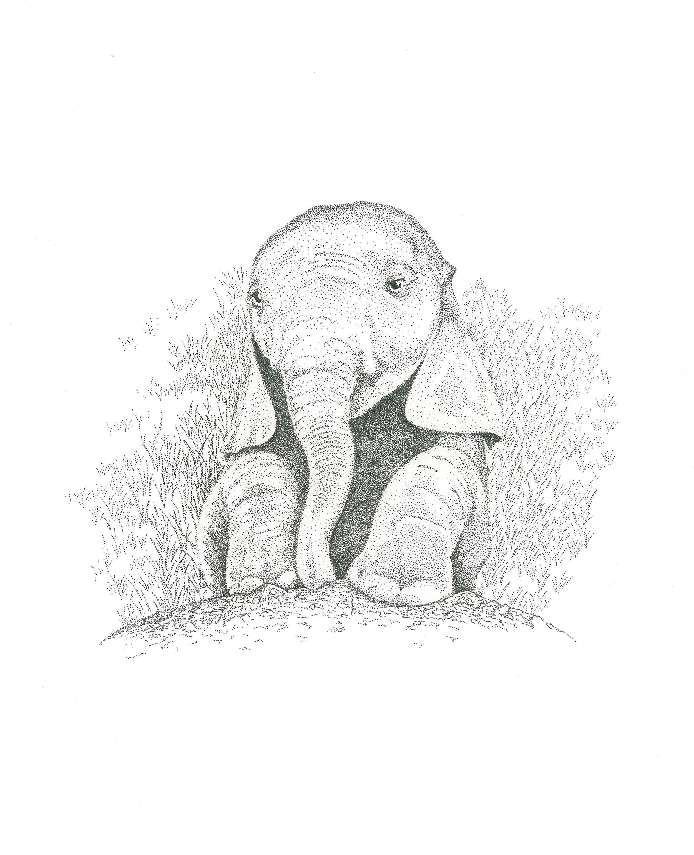 Elephantdots.jpg
