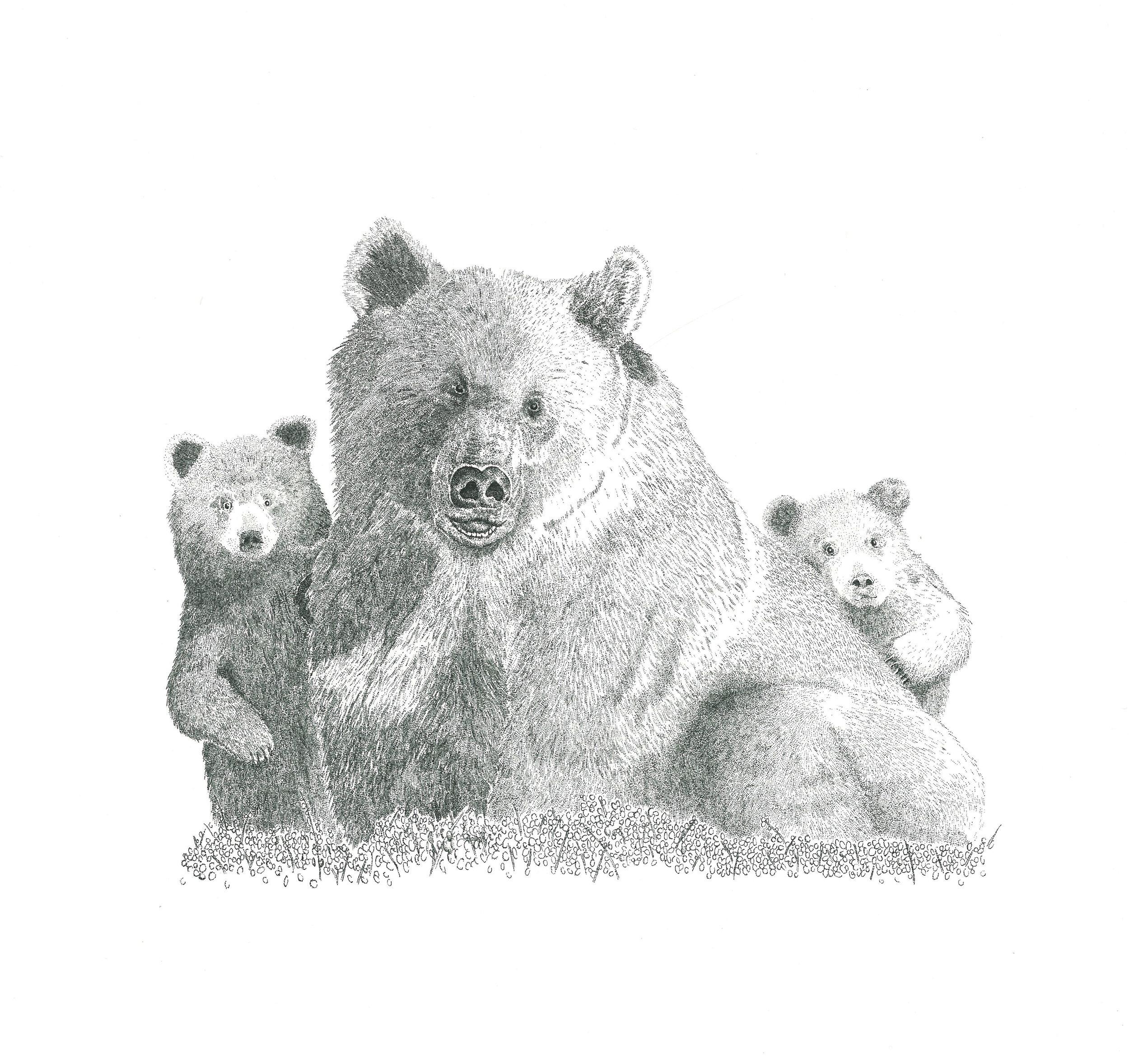 Bearsdots.jpg