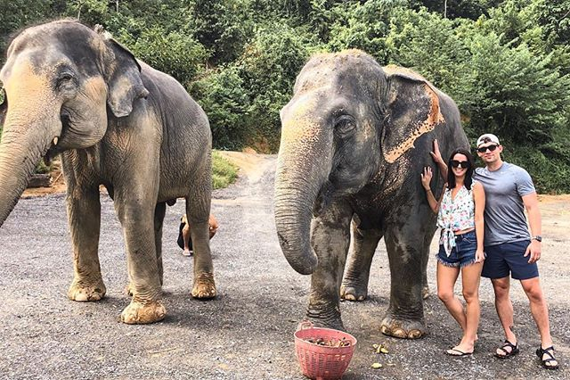 These gentle giants are truly amazing 🐘 such an experience to visit the @elephantjunglesanctuary and learn what they stand for. They are a rescue sanctuary that lets the elephants live in their natural state instead of being forced into cruel labor. They were so sweet and I loved feeding them 🍌🍌You can shop my look via the @liketoknow.it app! http://liketk.it/2xmpy #liketkit #LTKfamily #LTKsalealert #LTKstyletip #LTKunder50 #LTKunder100 - - #singapore #thialand #phuket #krabi #travelblog #travelblogger #travelphotography #beautifuldestinations #beachvibes #goodvibes #instatravel #letsgosomewhere #visitthialand #elephantjunglesanctuary #elephants #showmeyourmumu