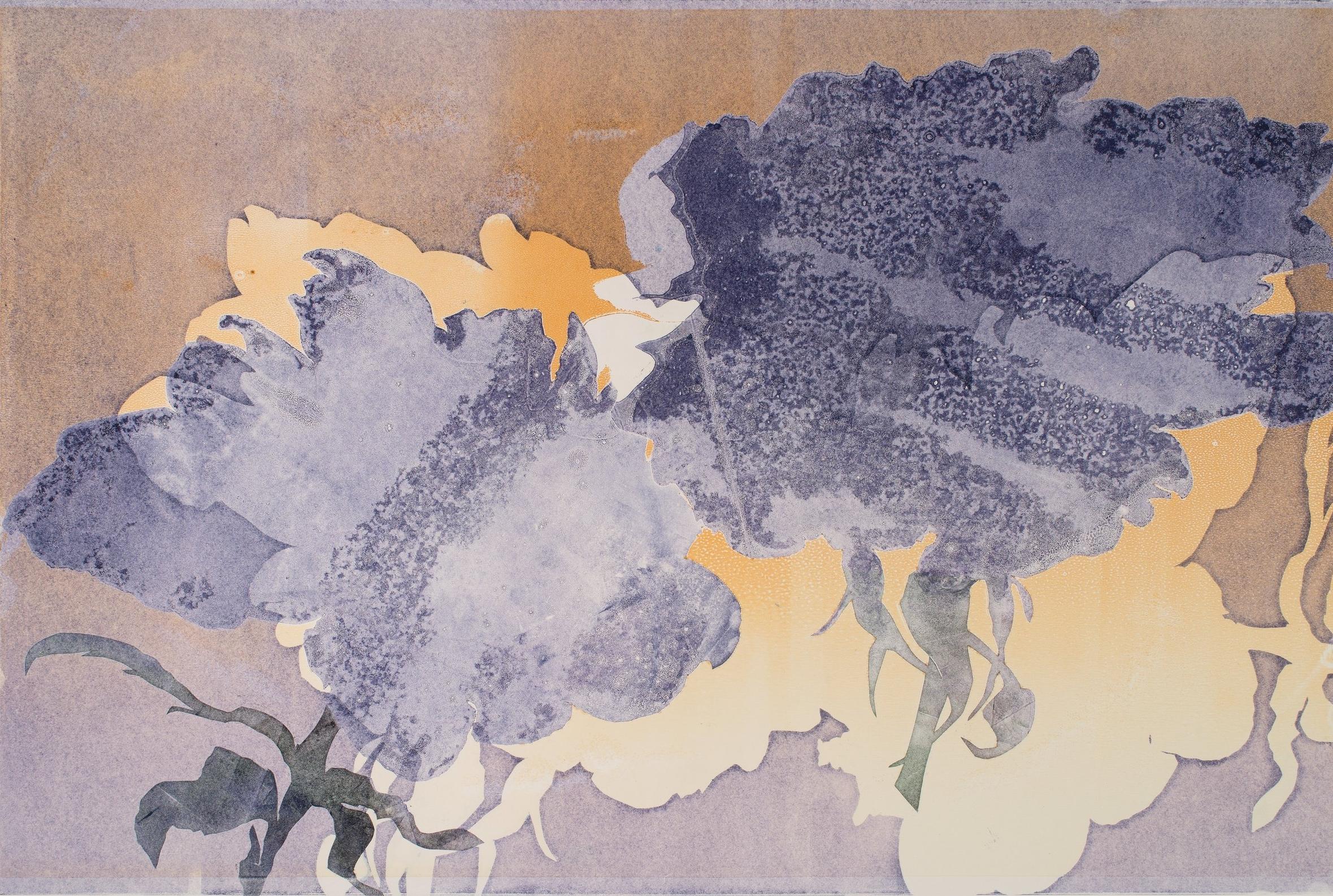 """Purple Roses,  2017, monotype, 22"""" x 30"""""""