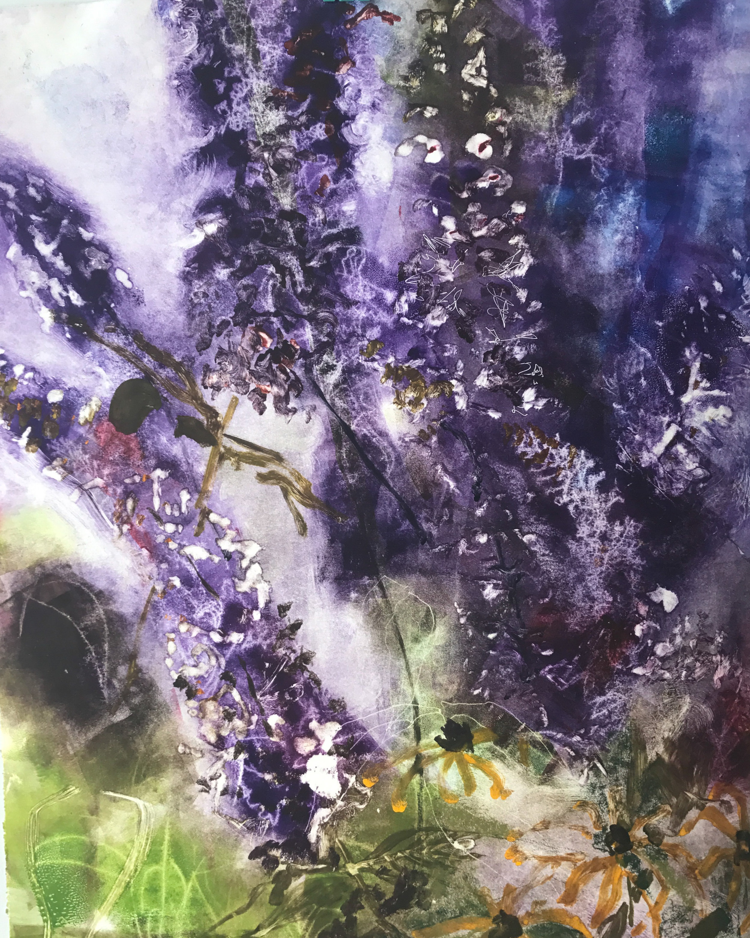 August Buddleia,  monotype, 22 x 27, 2017