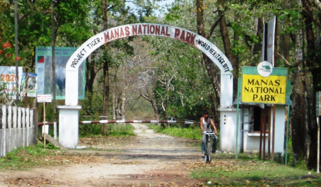 Baruah's logo is seen all over Assam