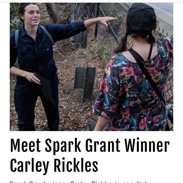 this month i was rewarded my first grant by @dreamwarriorsfoundation - a supporter of women, femme-identifying, and non-binary individuals. read about my plans in the dwf mag ~ link in bio!