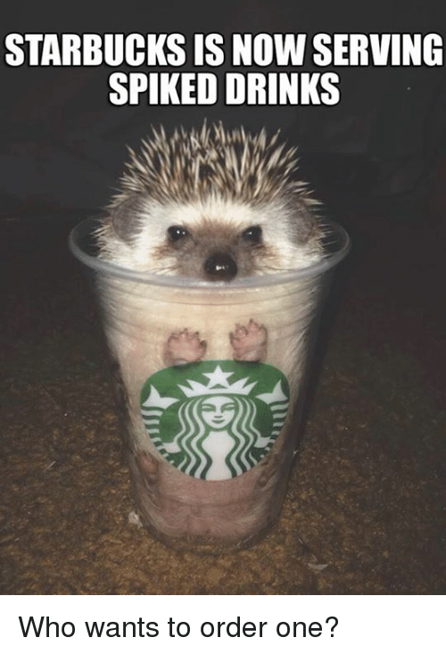 starbucks-is-now-serving-spiked-drinks-who-wants-to-order-9848610.png