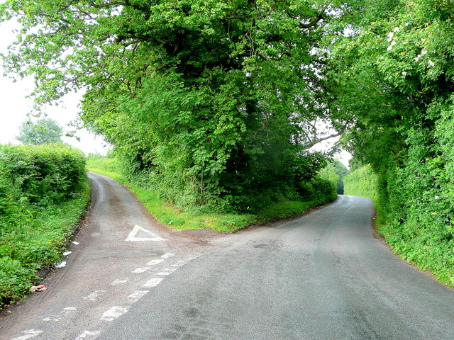 Fork_in_the_road_-_geograph.org.uk_-_1355424.jpg