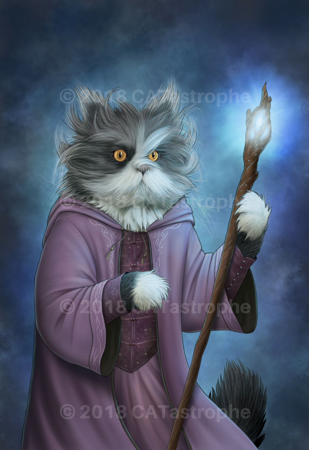 The Wizard of Paws   Illustration inspired by: @atchoumthecat
