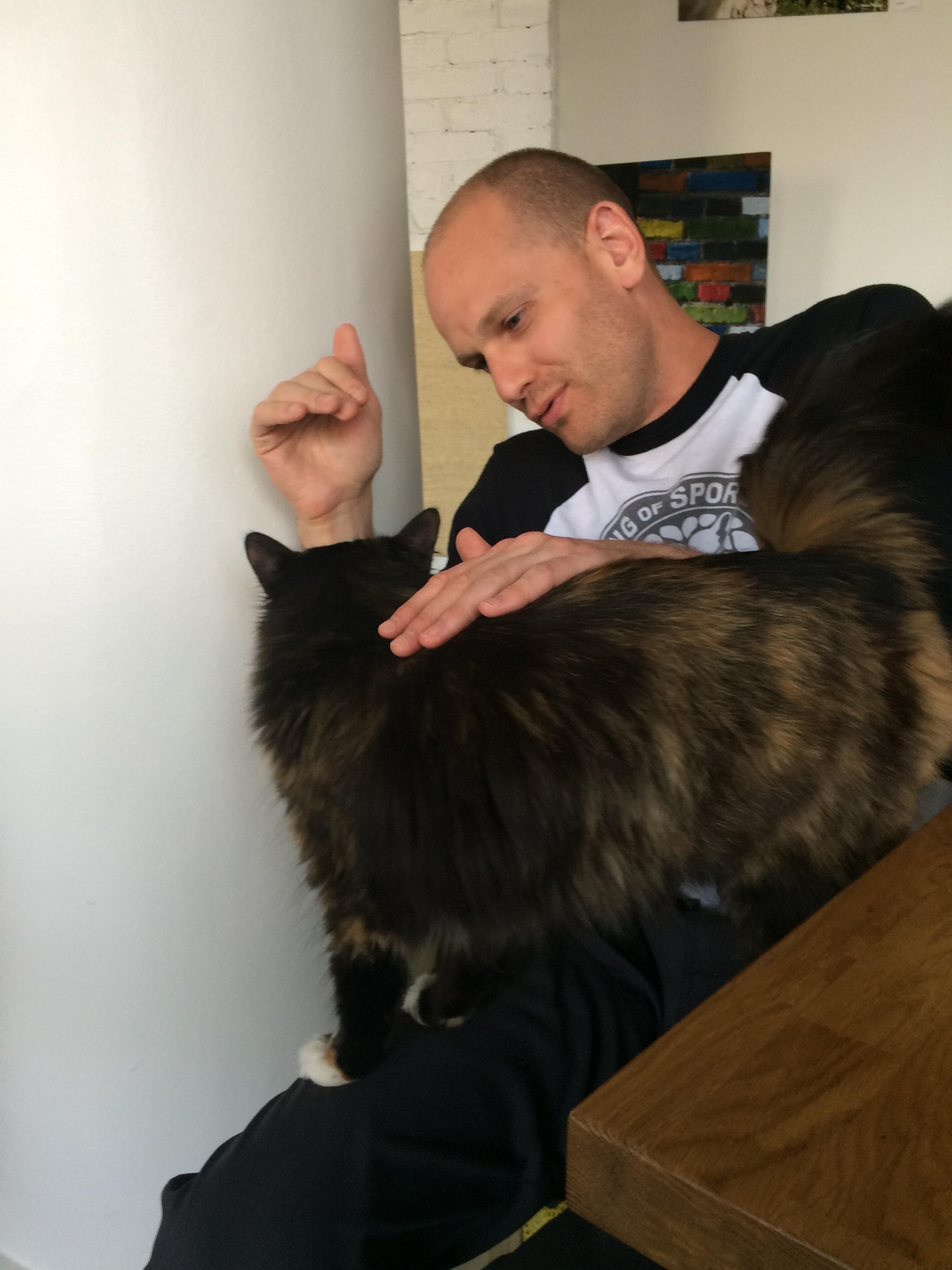 Nurri Kassikohvik Tallinn cute cat on lap