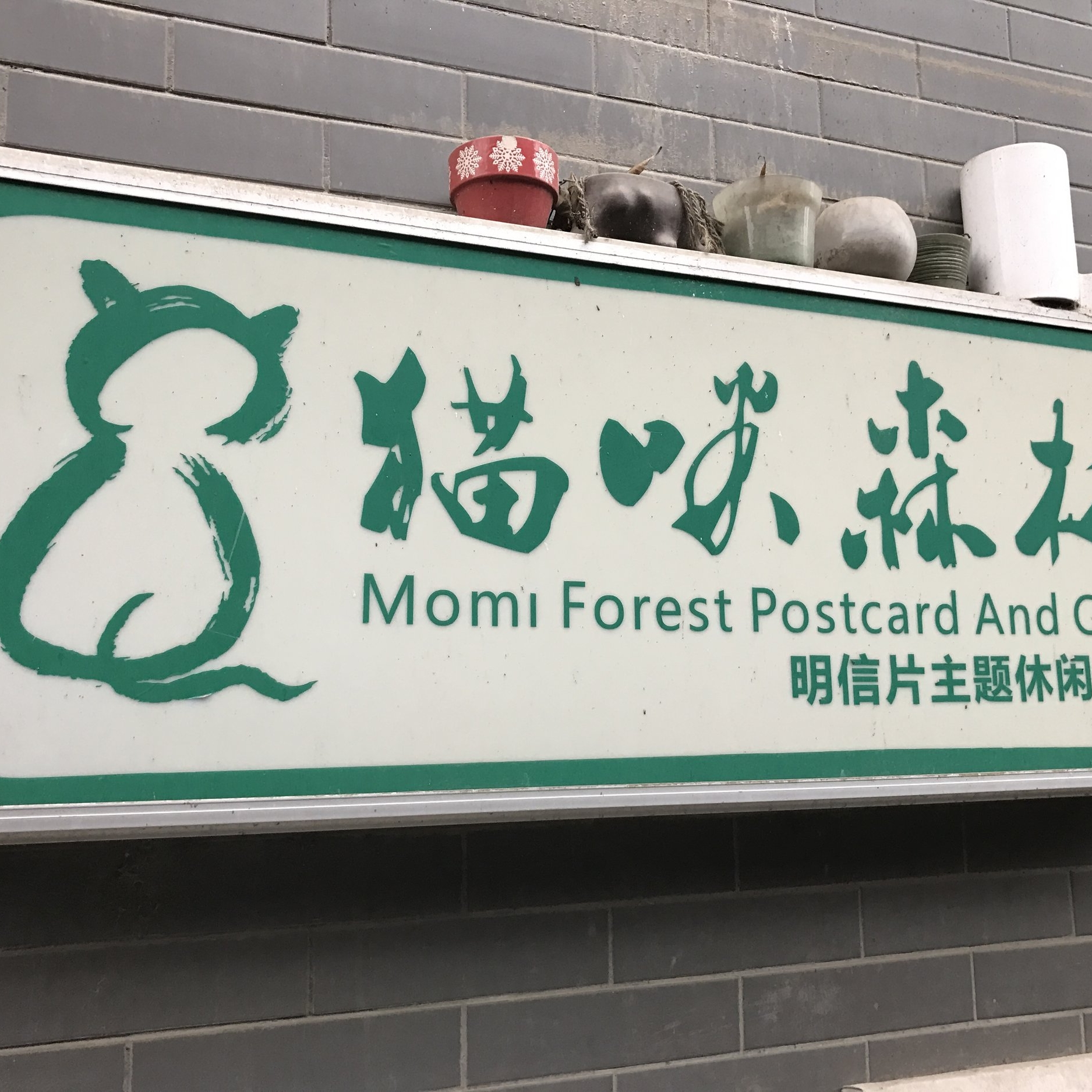 Momi Forest Cat Cafe   Xian ,China