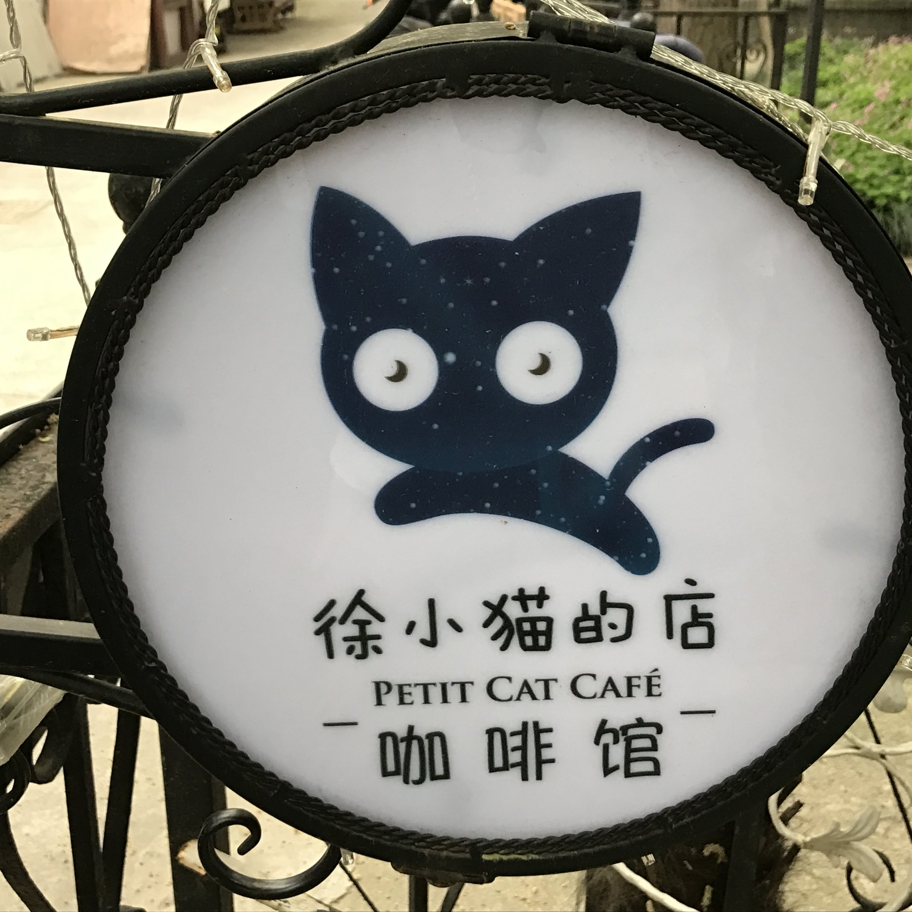 Petit Cat Cafe   Shanghai, China