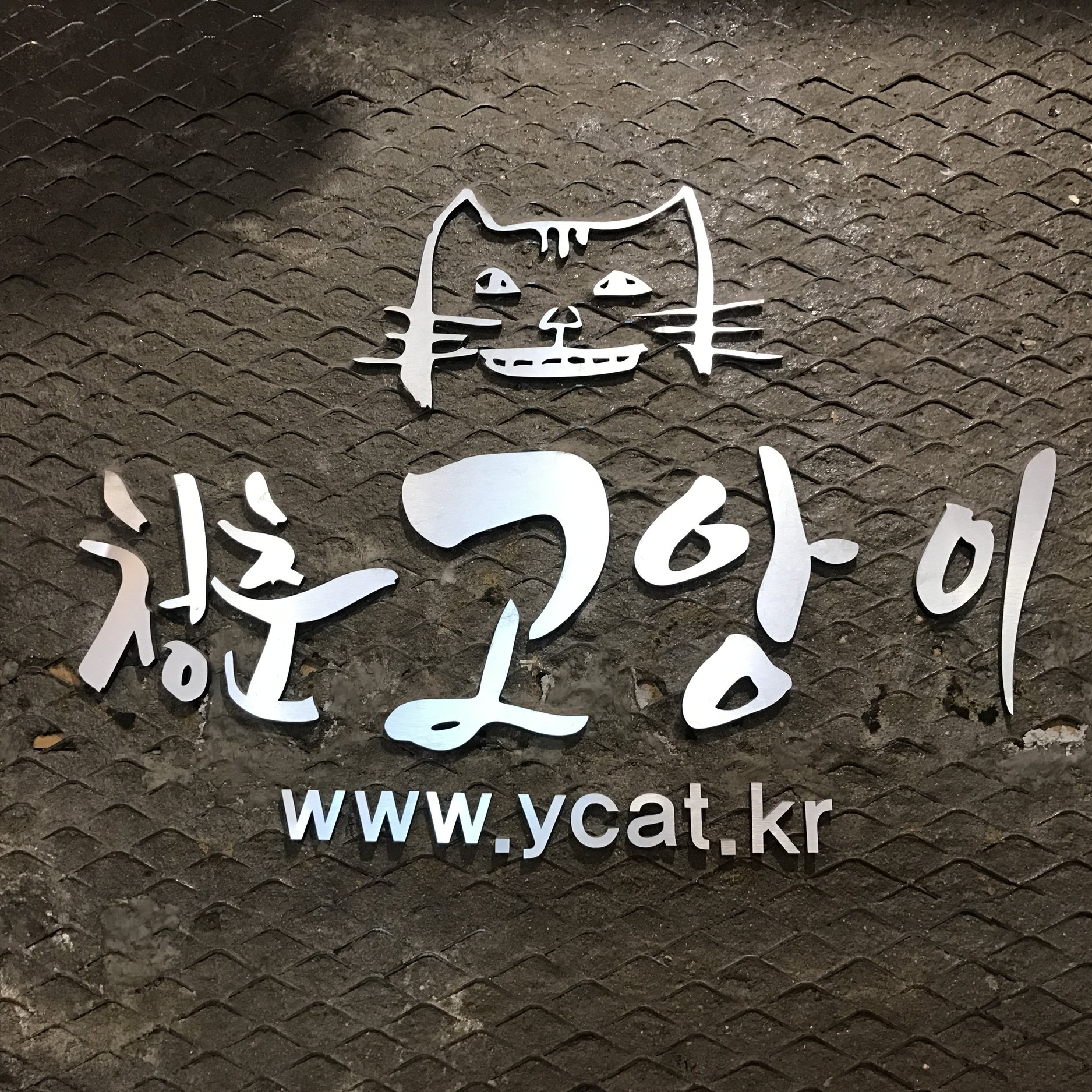 Y Cat Cafe (fka Gio)   Seoul, South Korea