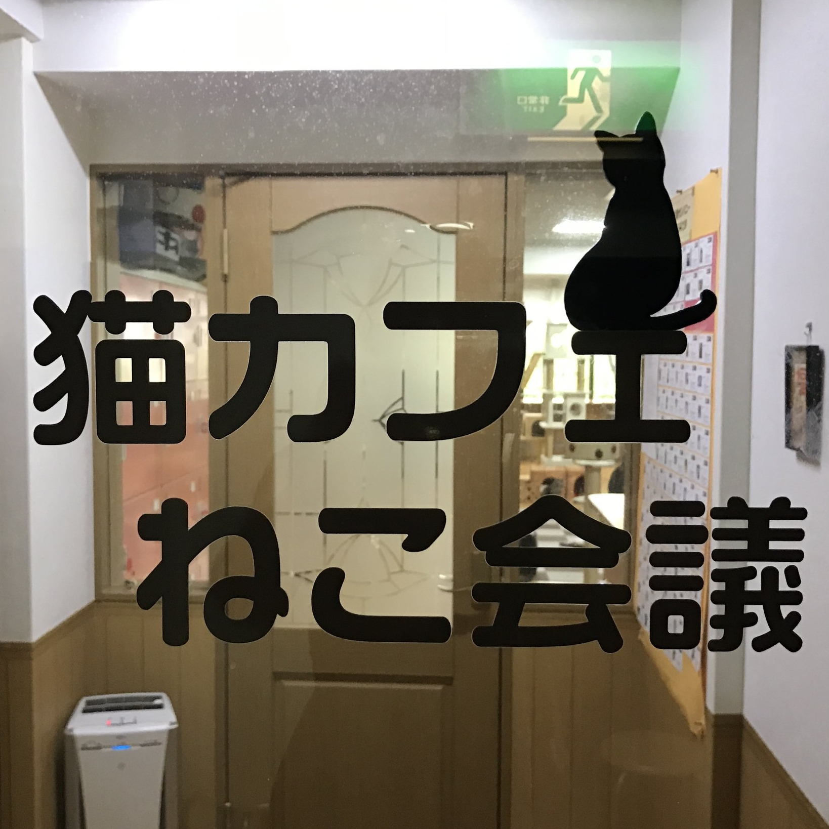 Cat Cafe Nekokaigi   Kyoto, Japan