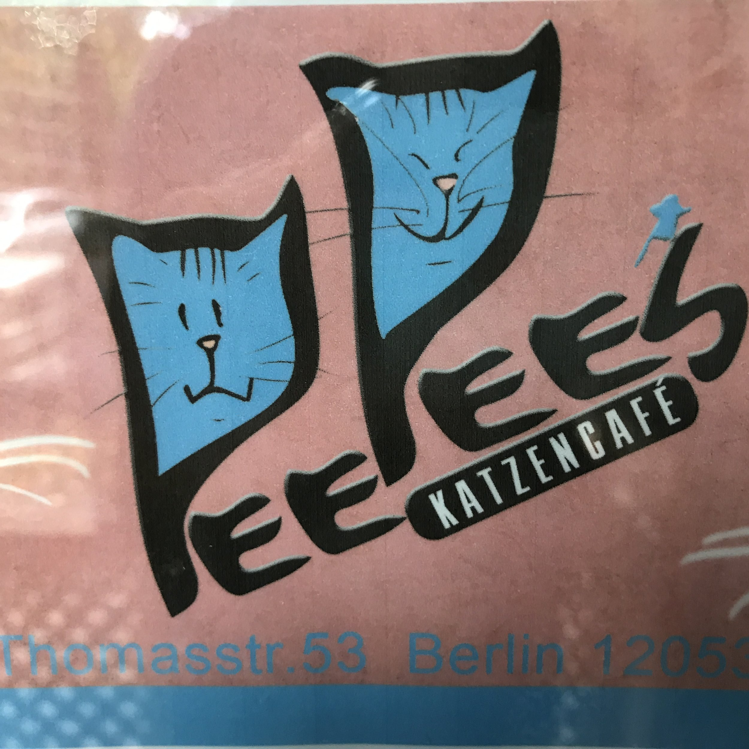 Pee Pees Katzencafe   Berlin, Germany