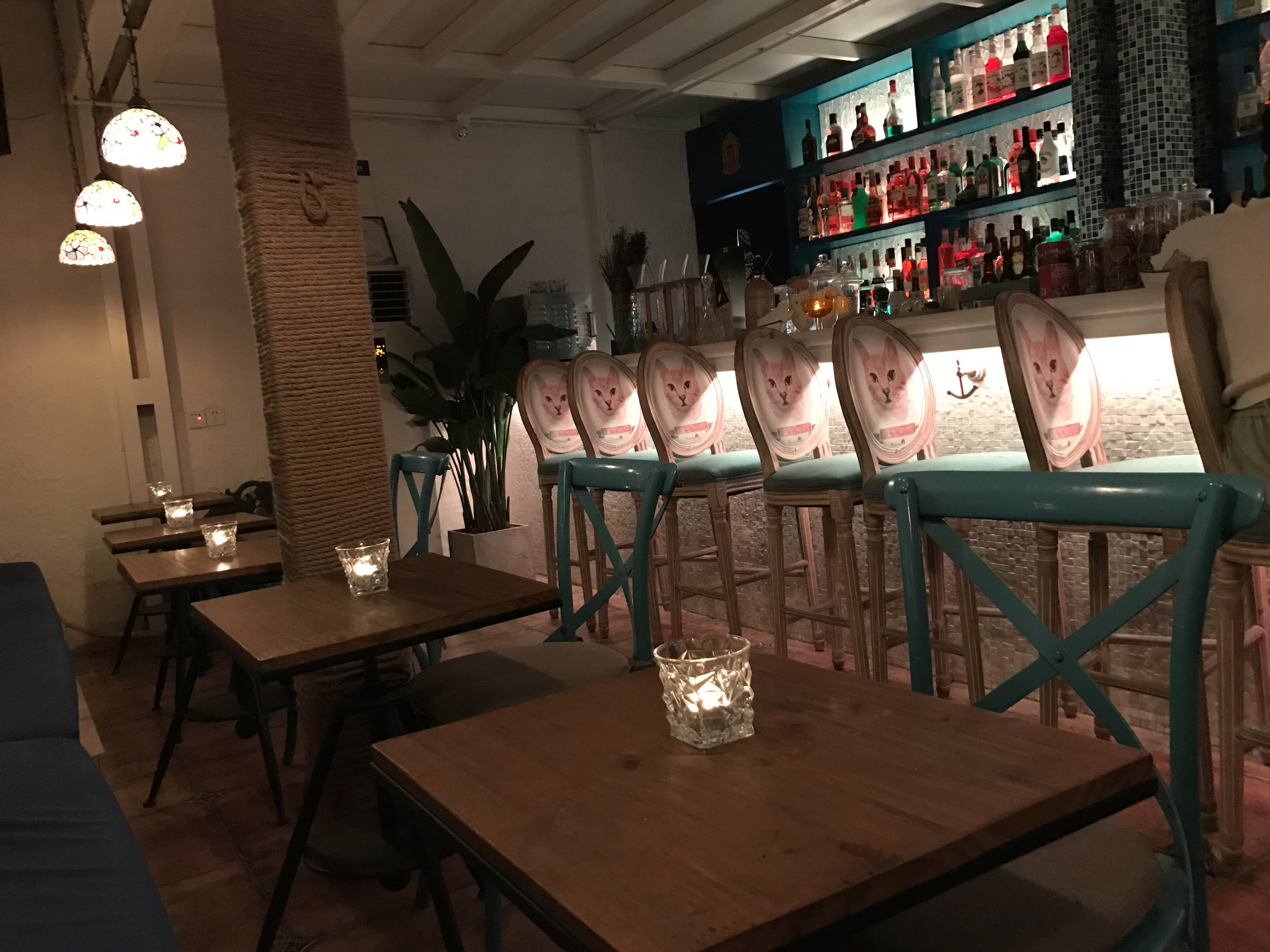 Sirena is a restaurant featuring stray cats in Wudaoying alley in Beijing