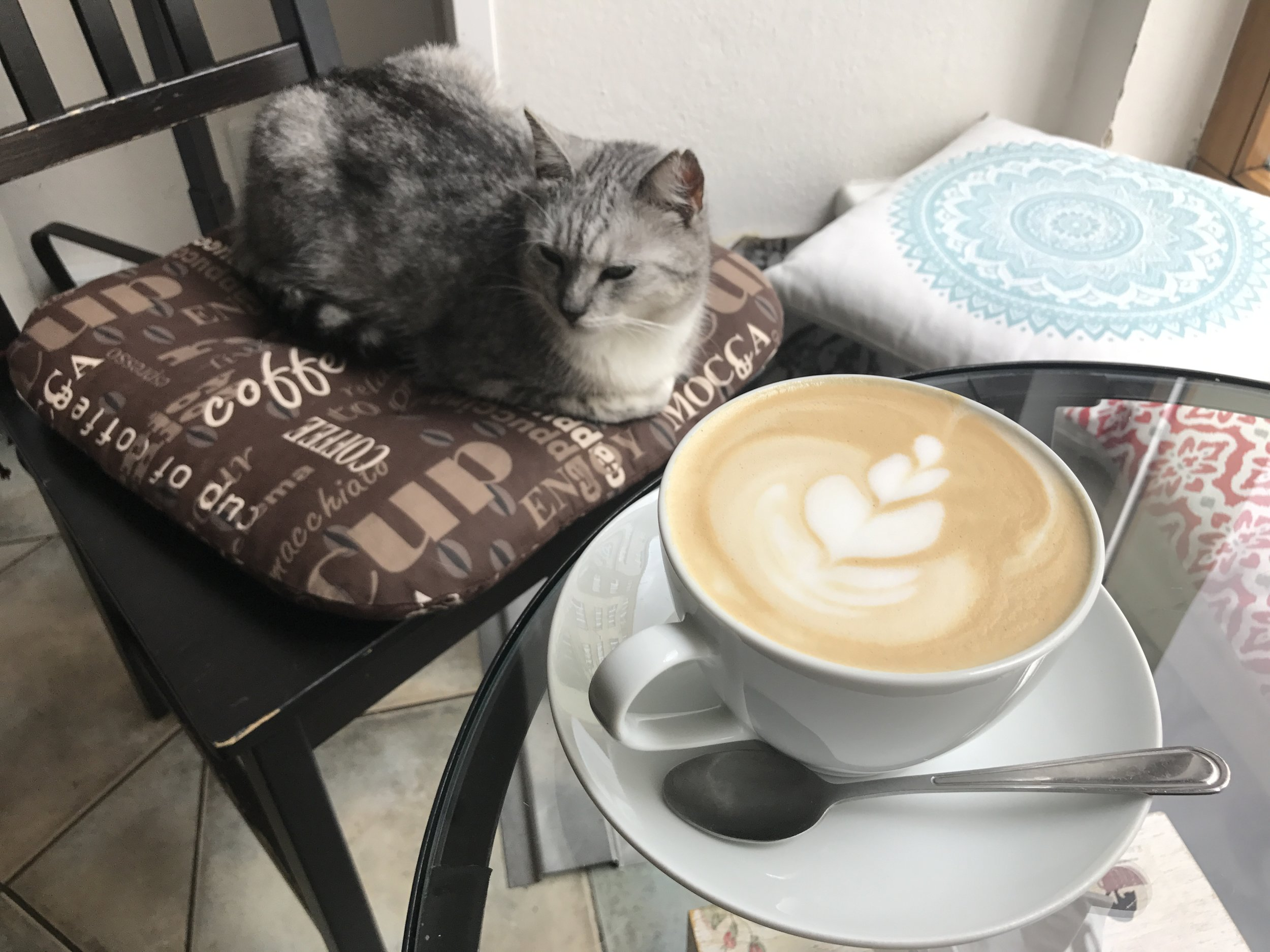 Delicious drinks (like this latte) as well as pastries and food are available
