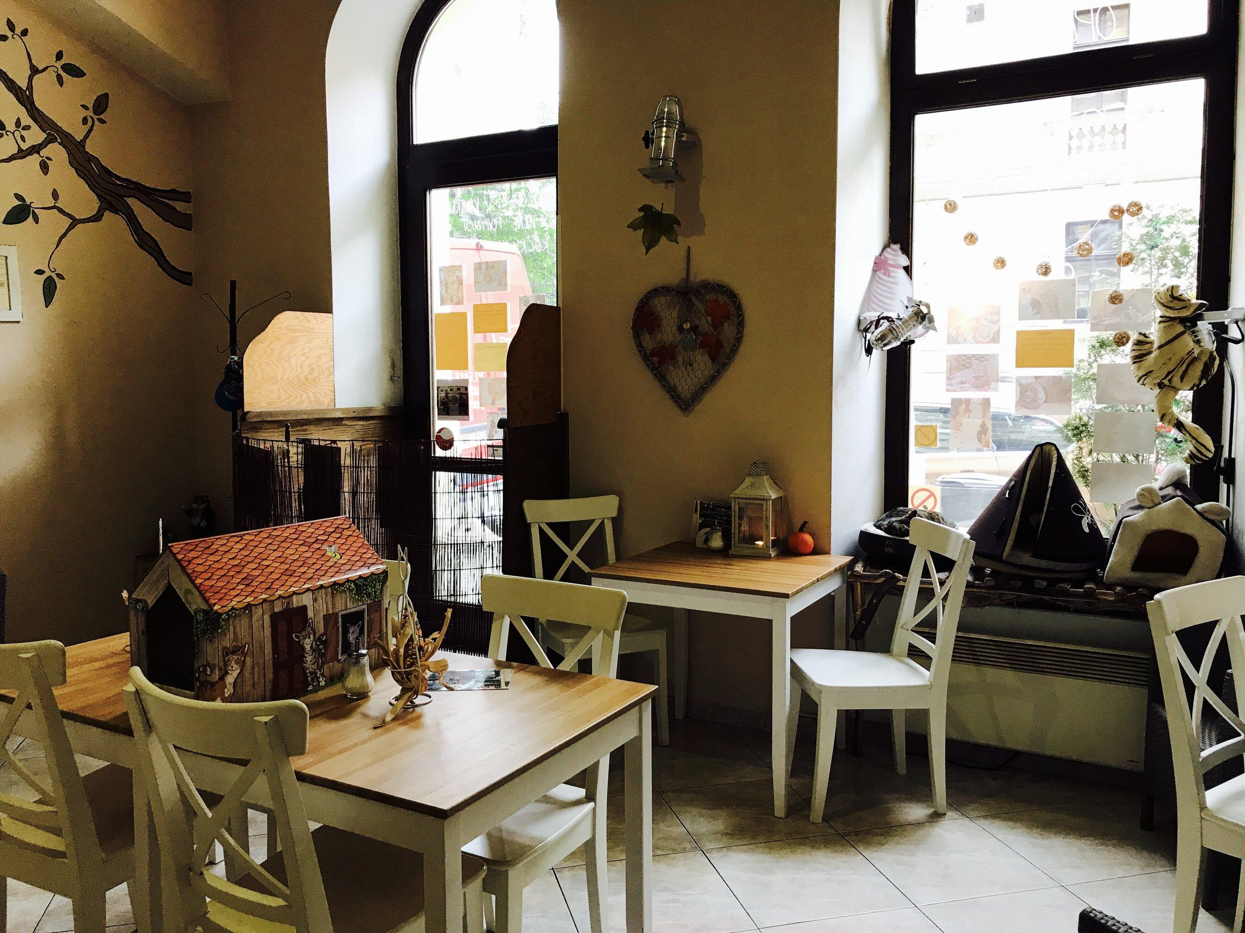 Lots of comfortable cafe seating at Kocici Kavarna in Prague