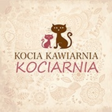 Cat Cafe Kociarnia   Krakow, Poland