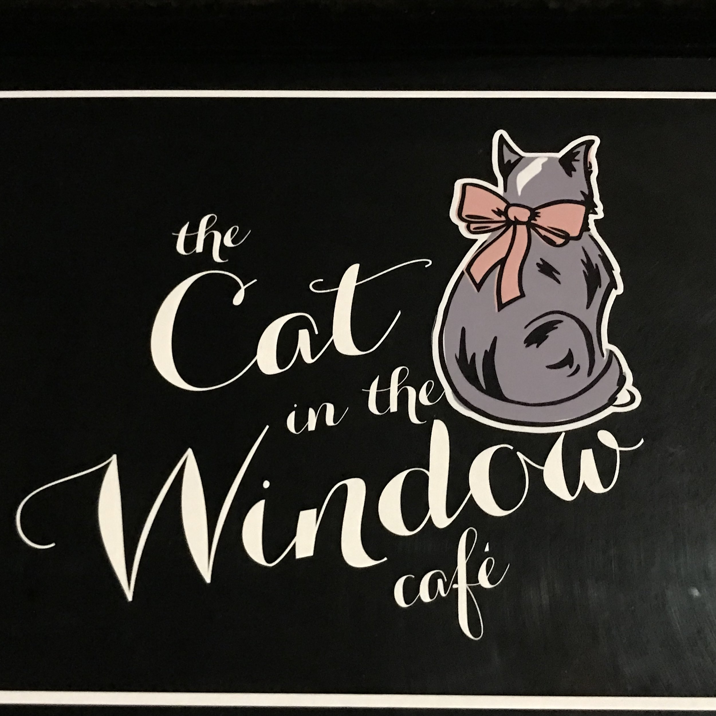 The Cat in the Window   Aberdeen, UK (Scotland)