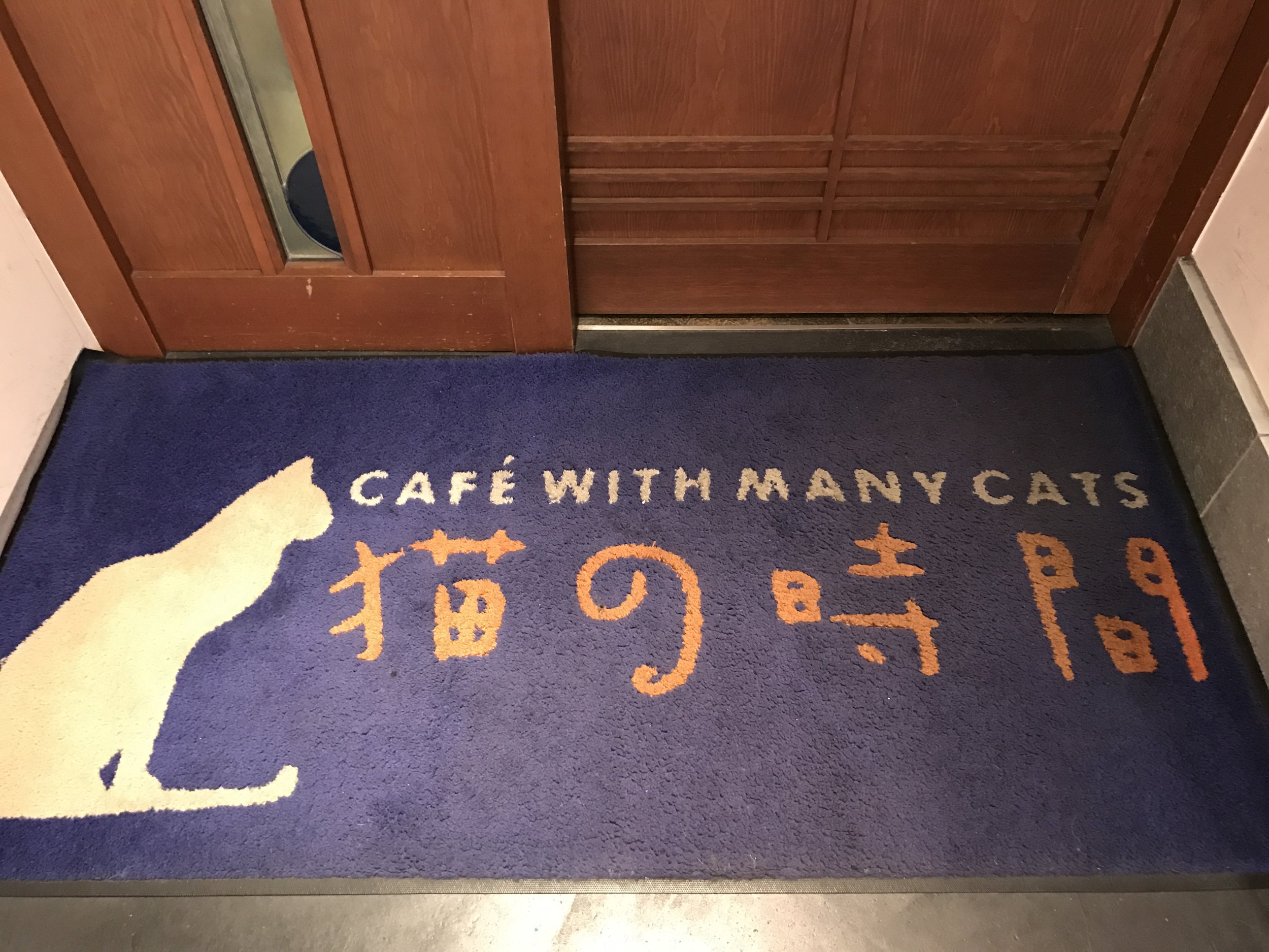 Neko no Jikan was the first cat cafe in Japan, opening in 2004