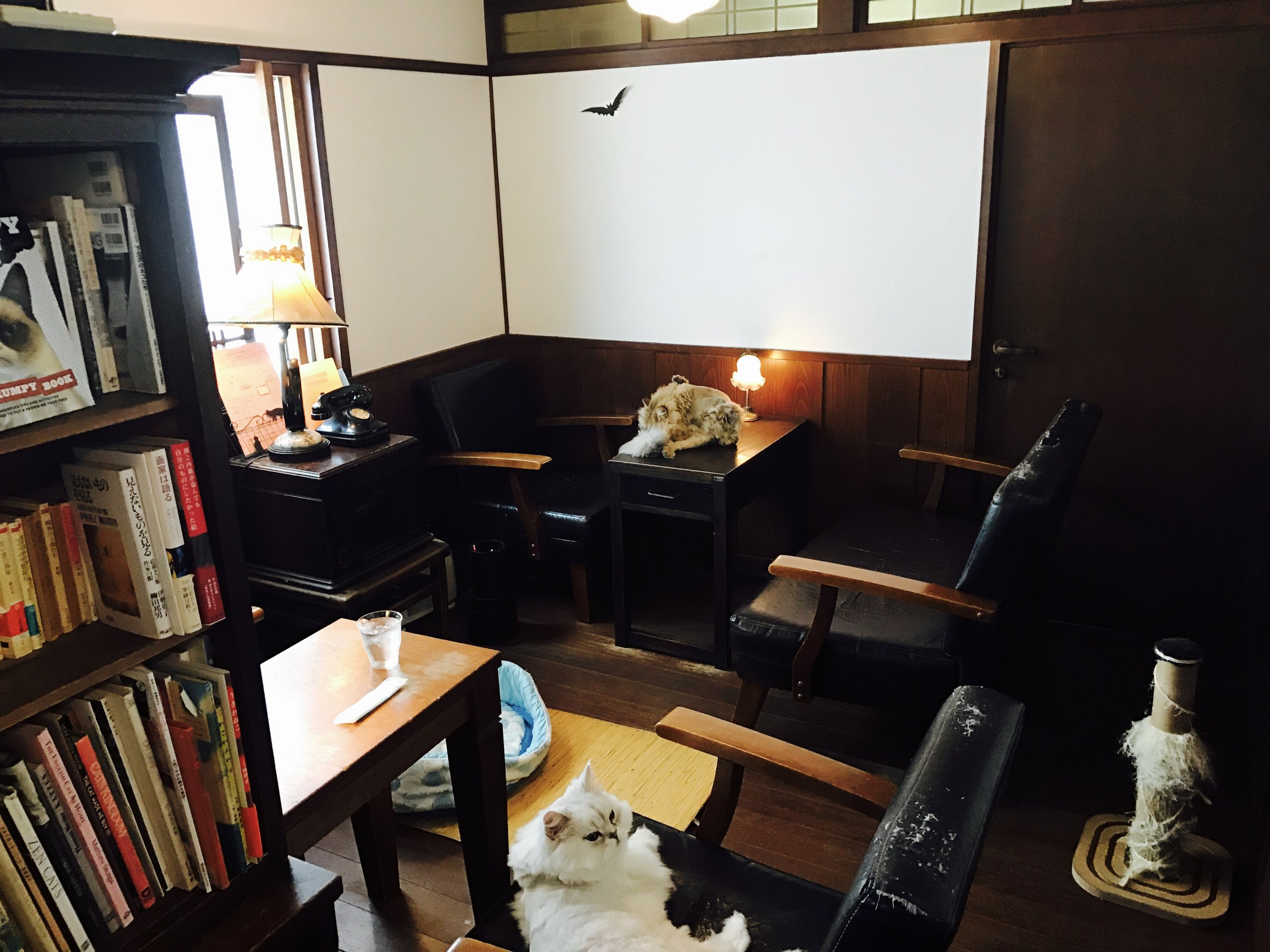 Osaka_CloudNine-08.jpg