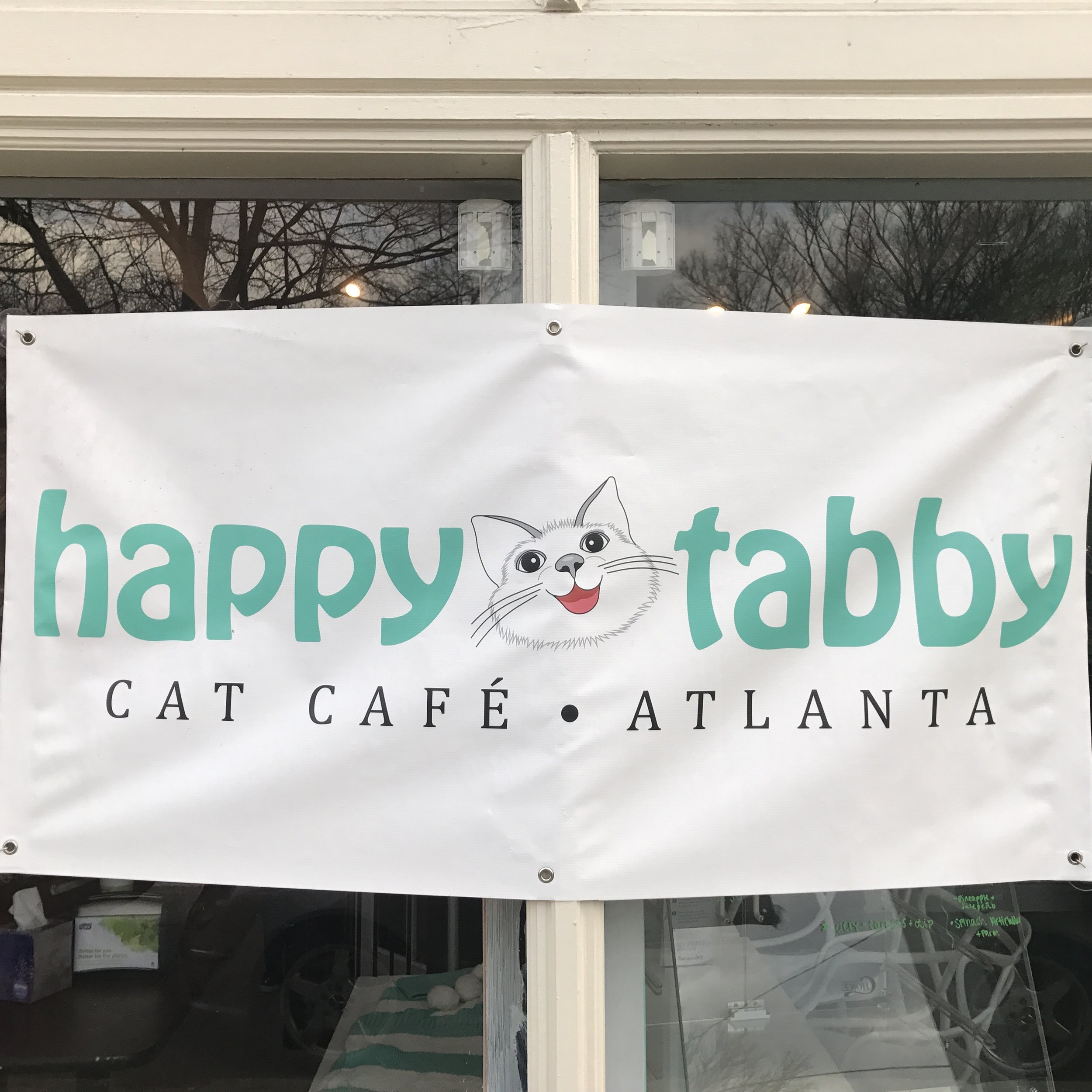 Happy Tabby   Atlanta, GA, USA