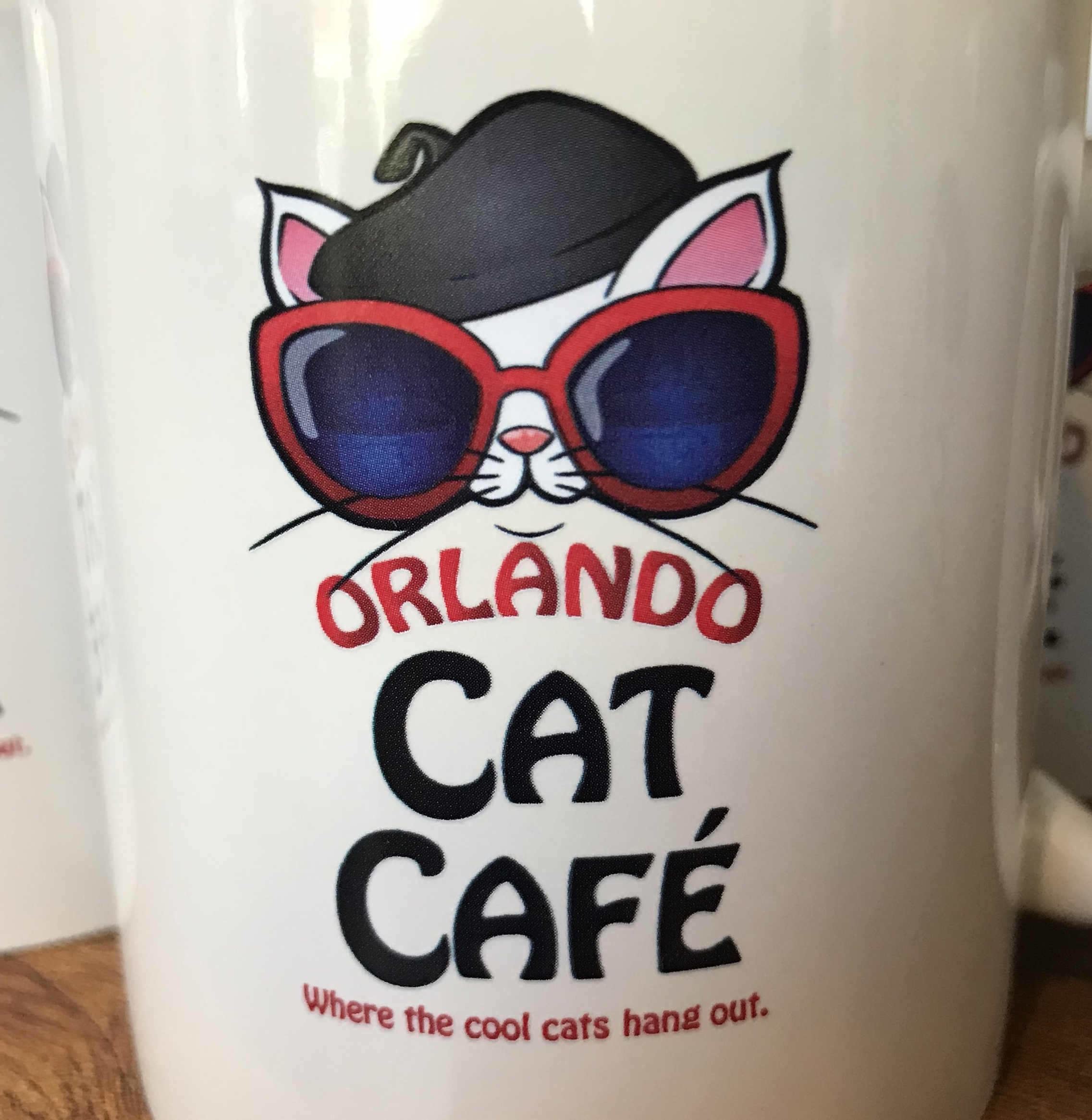 Orlando Cat Cafe   Orlando, FL, USA