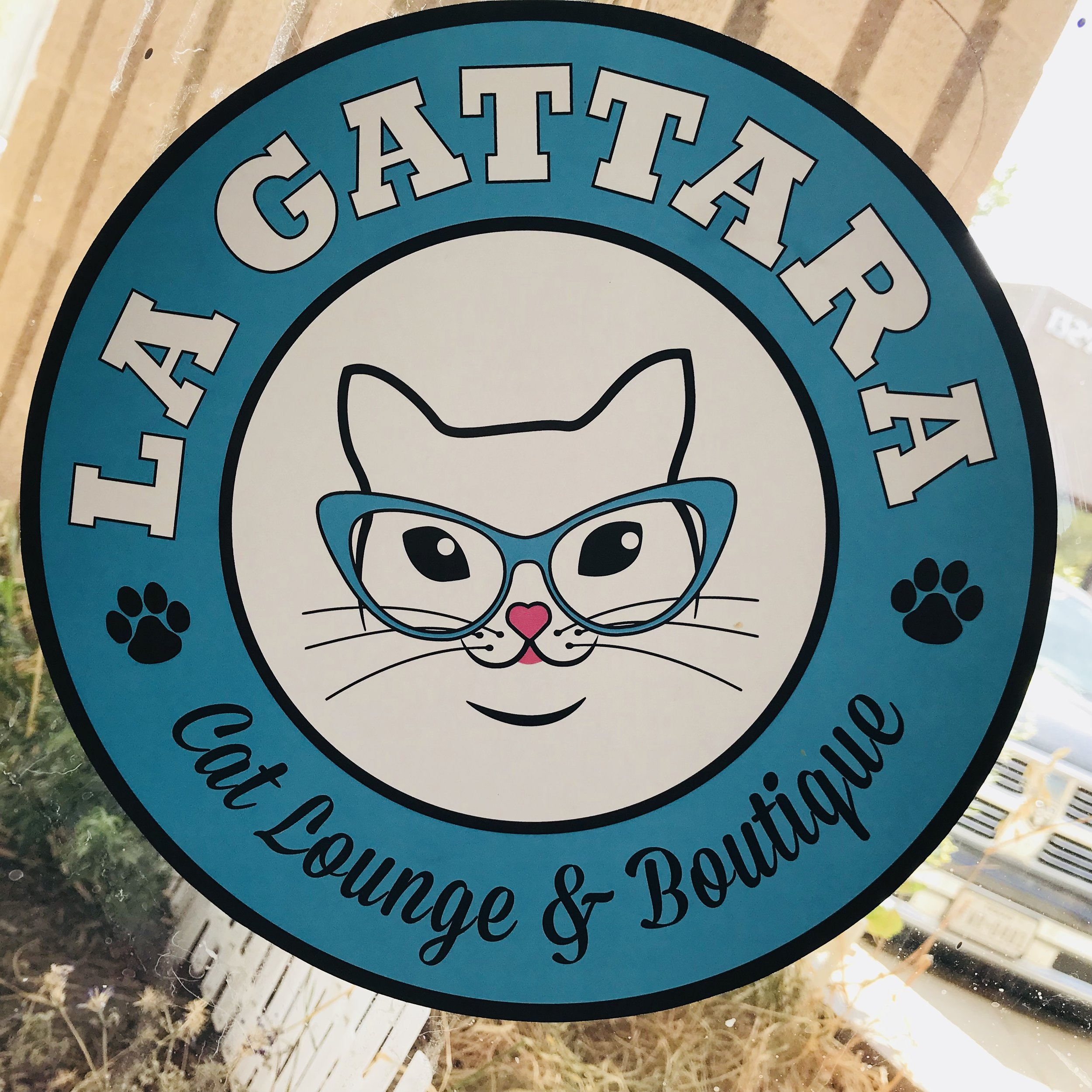 La Gattara Cat Lounge   Tempe, AZ, USA