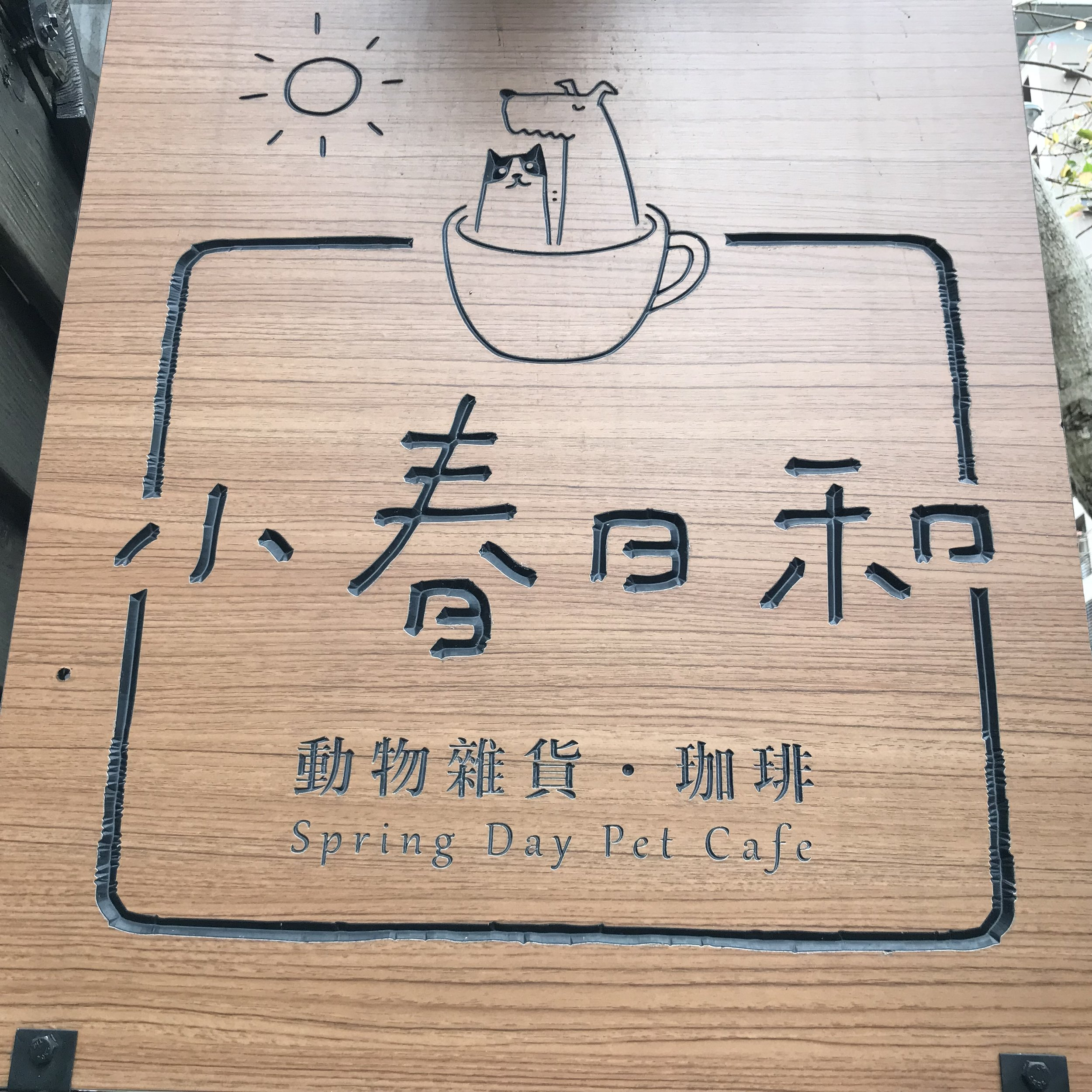 Spring Day Pet Cafe   Taipei, Taiwan
