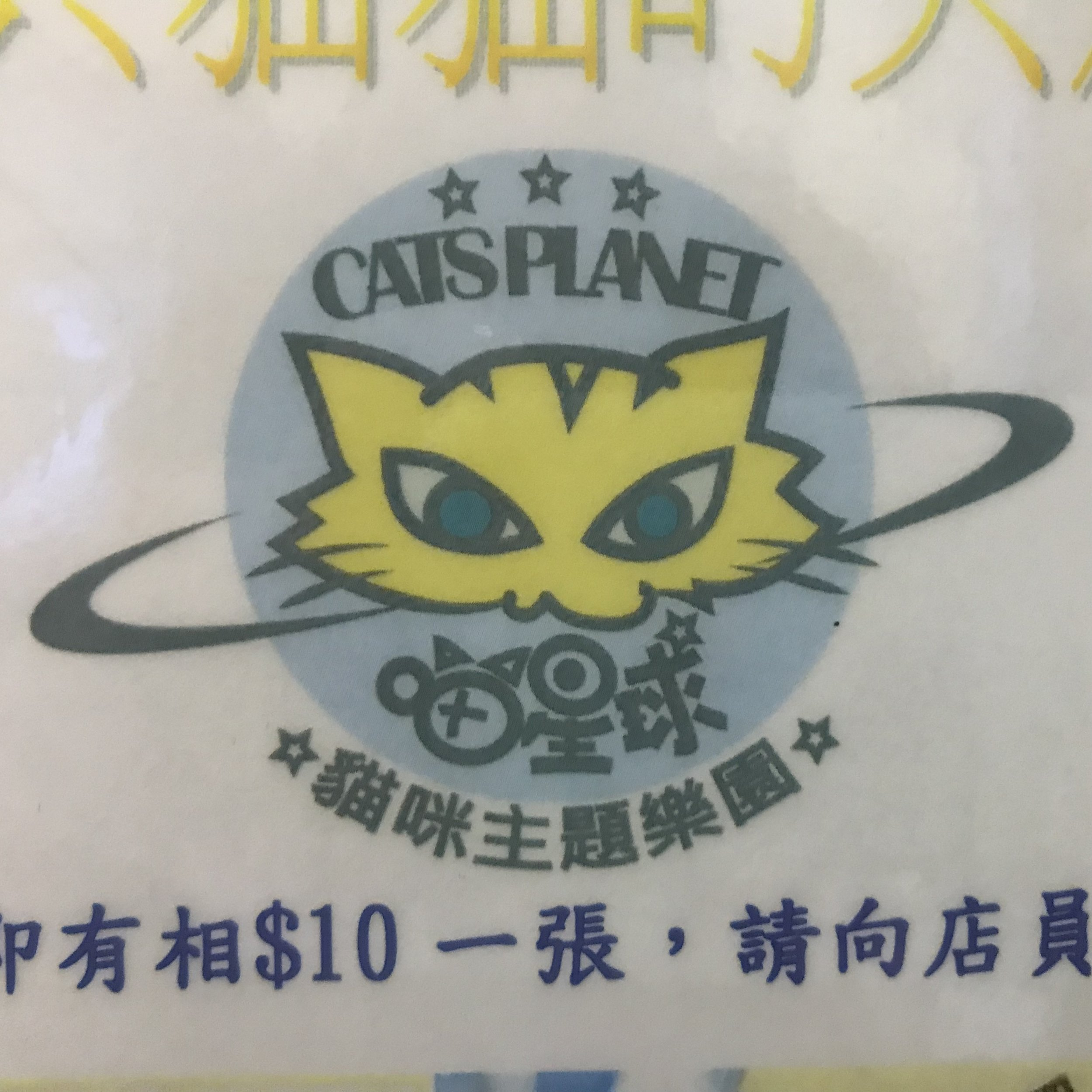 Cats Planet   Hong Kong