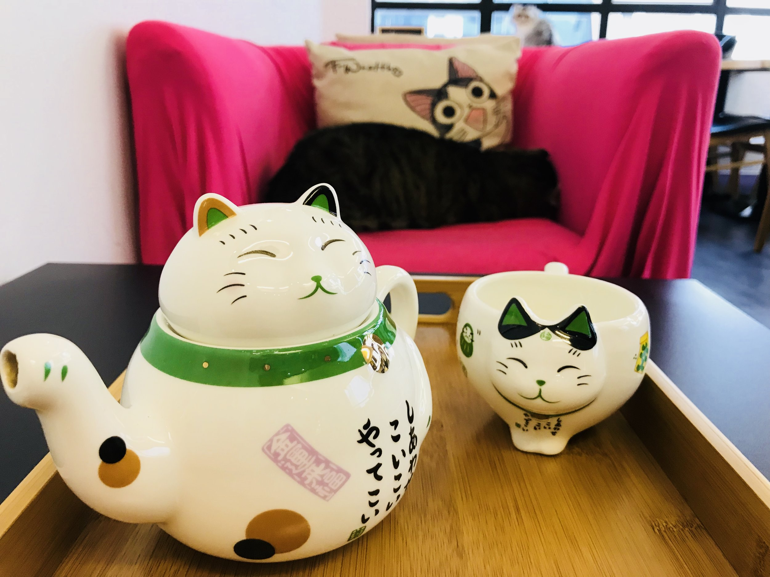 Cafe de Kitten-10.jpg