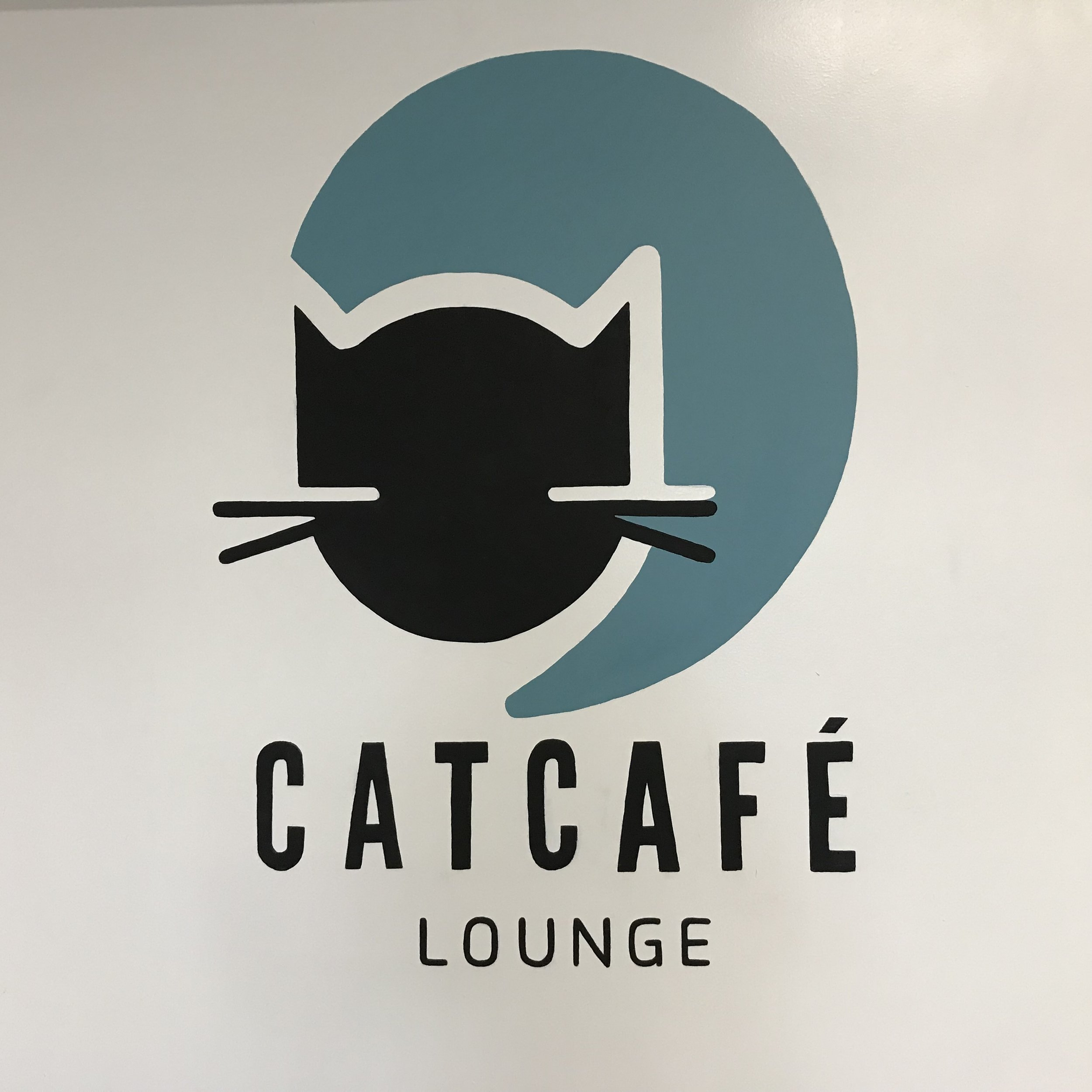 CatCafe Lounge   Los Angeles, CA, USA