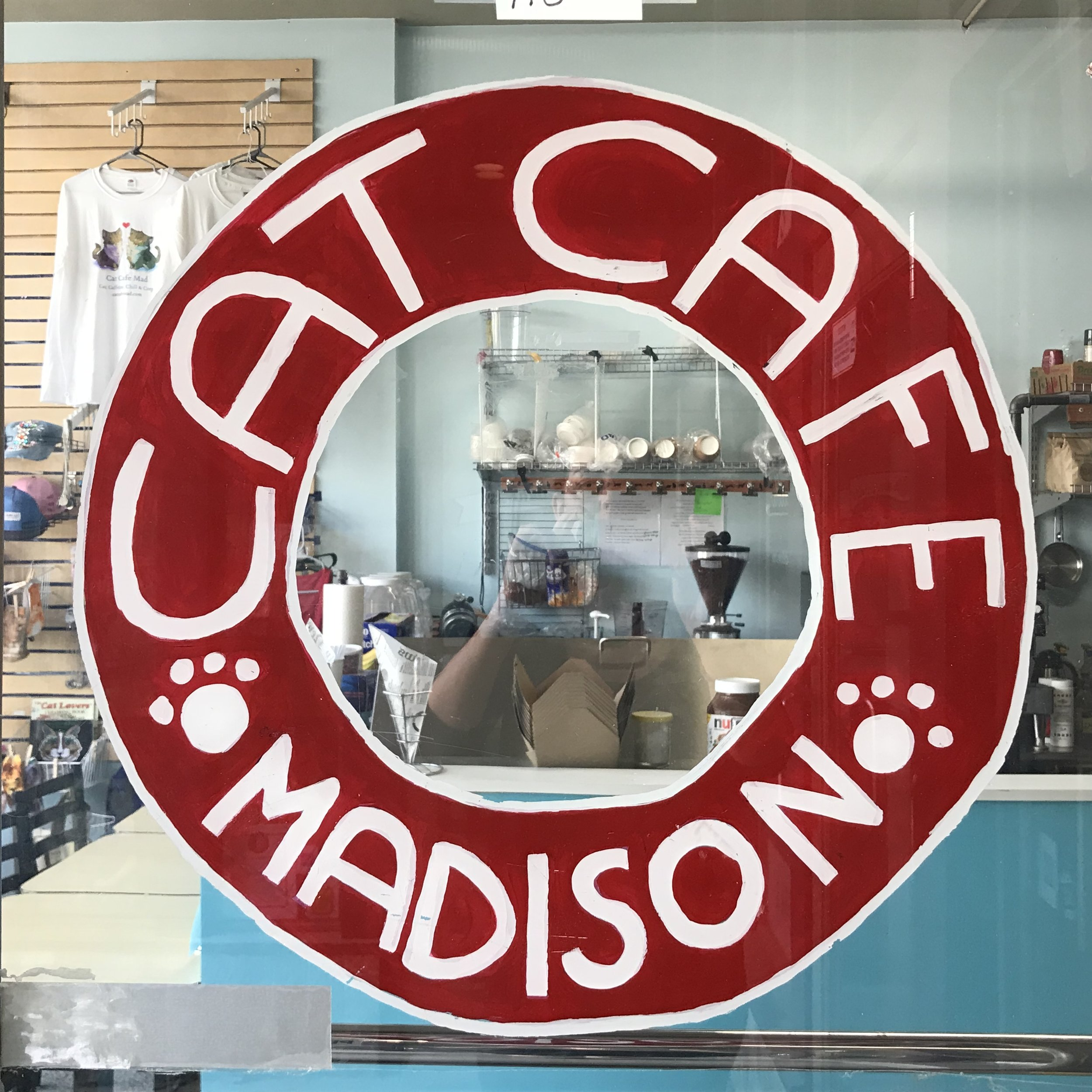 Cat Cafe Mad   Madison, WI, USA