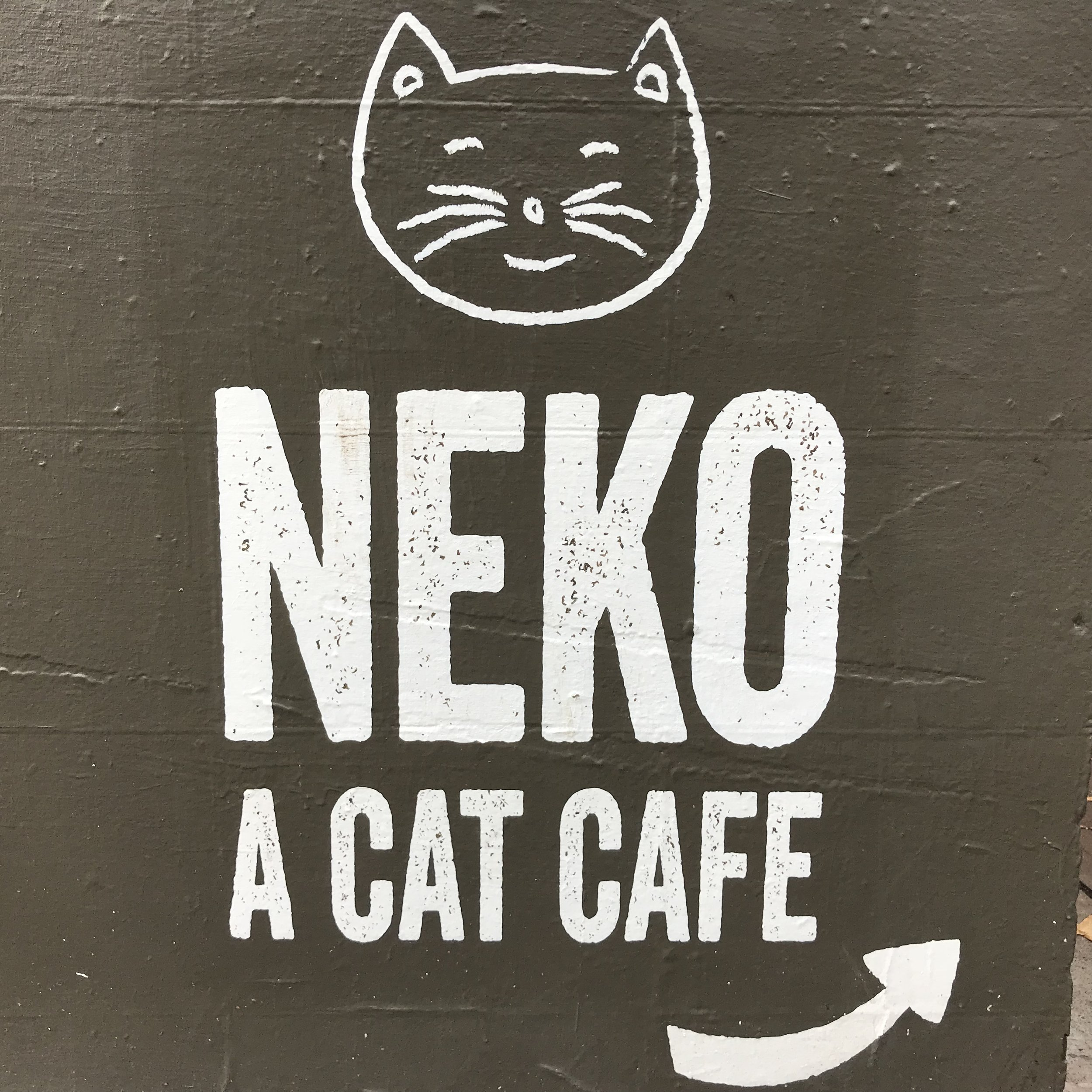 Neko   Seattle, WA, USA