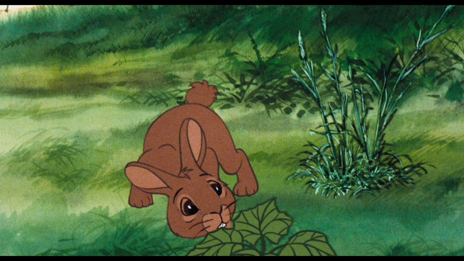 WARNING: This is the last moment of happiness in the entire film. And it's within the first 5 minutes.