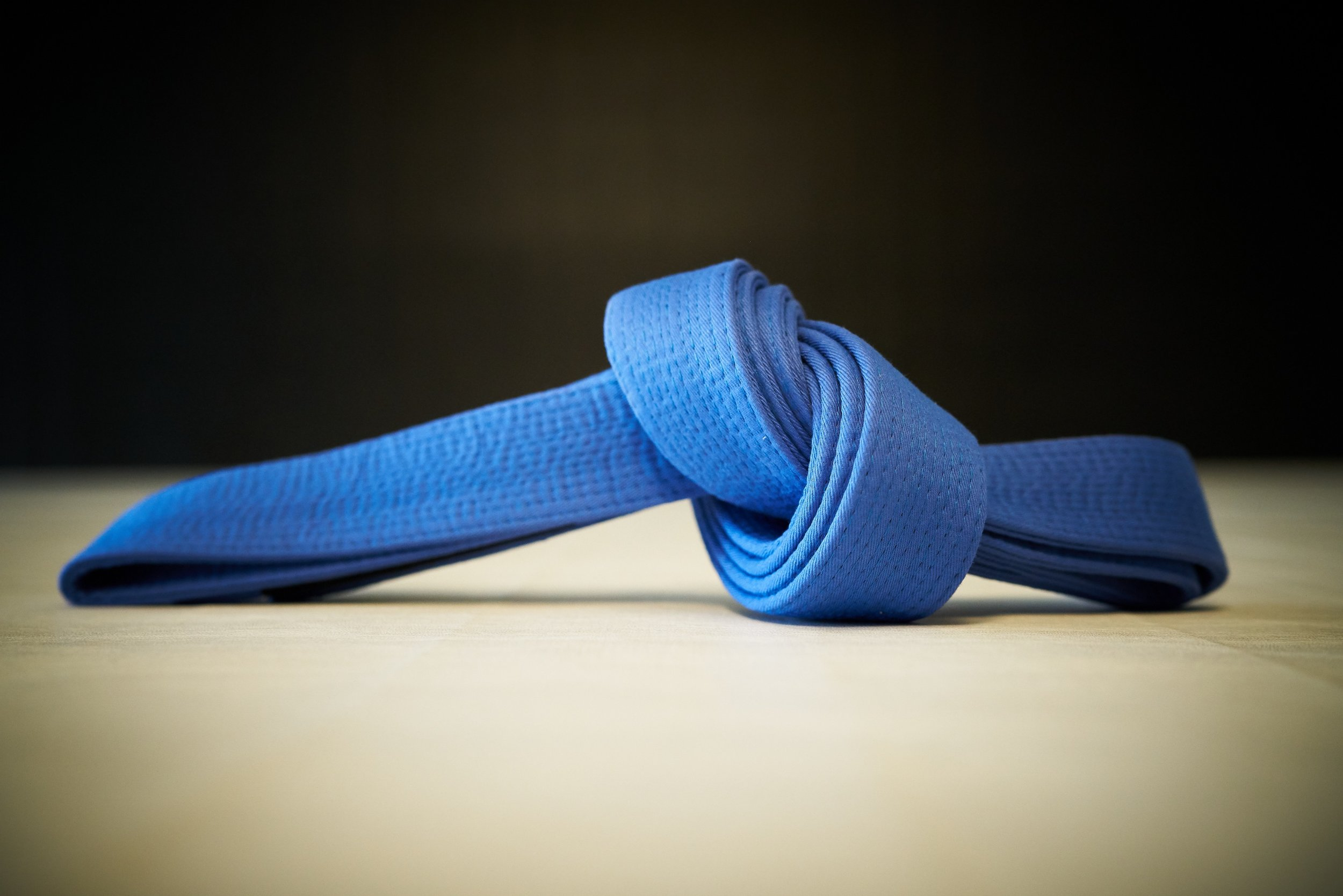 Blue Belt Plain.jpg