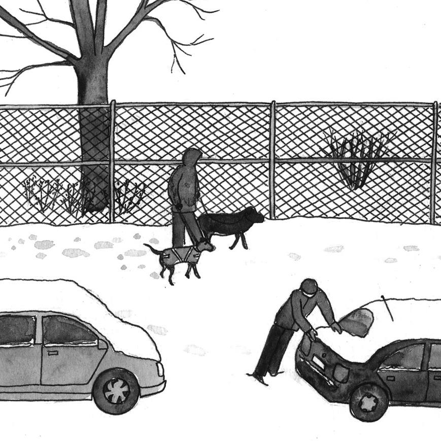 NY Japion: Silent Snow