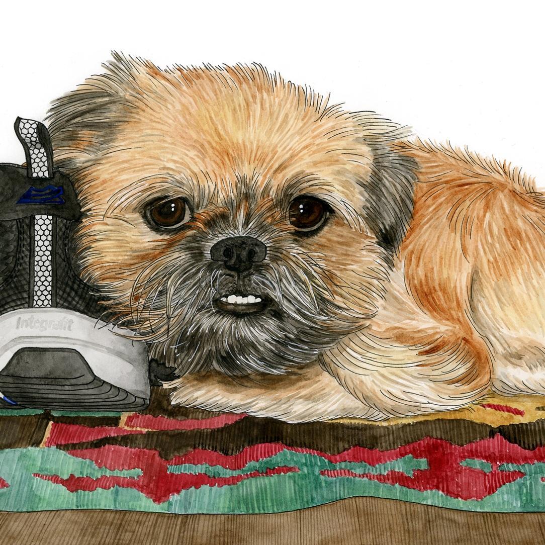 Pet Portraits: Gussie