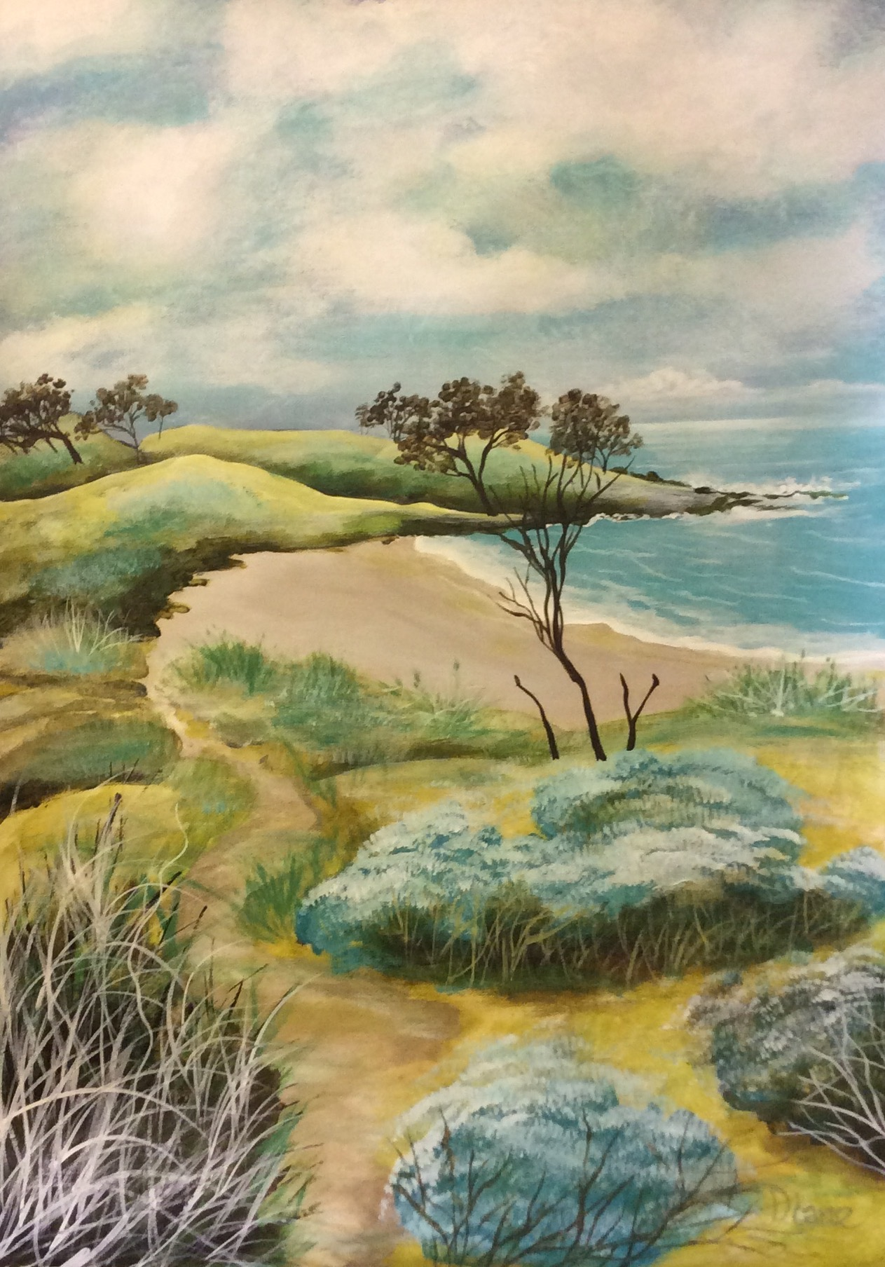 Angourie Back Beach (SOLD)
