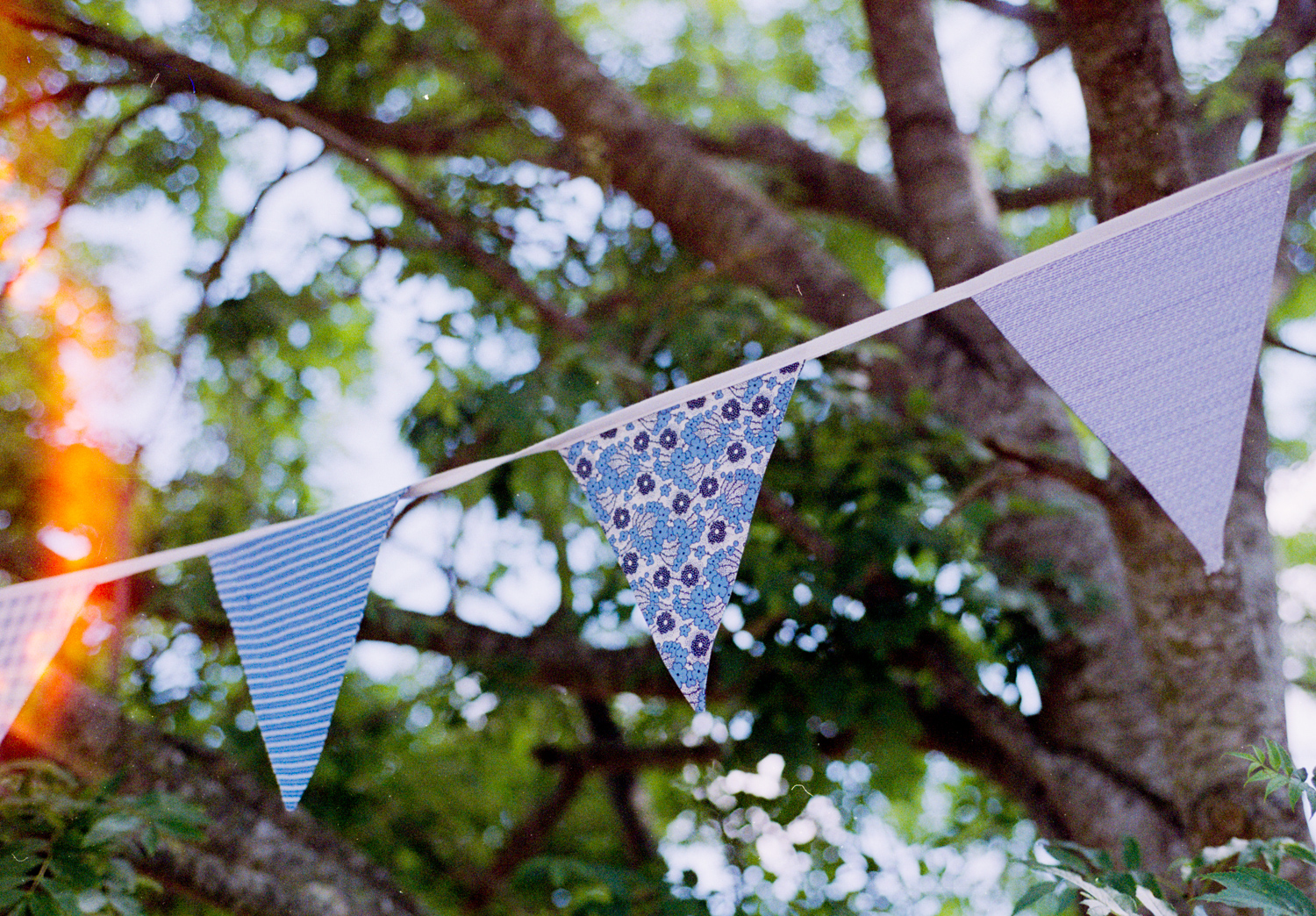 Photographing with film at weddings - bunting in a tree
