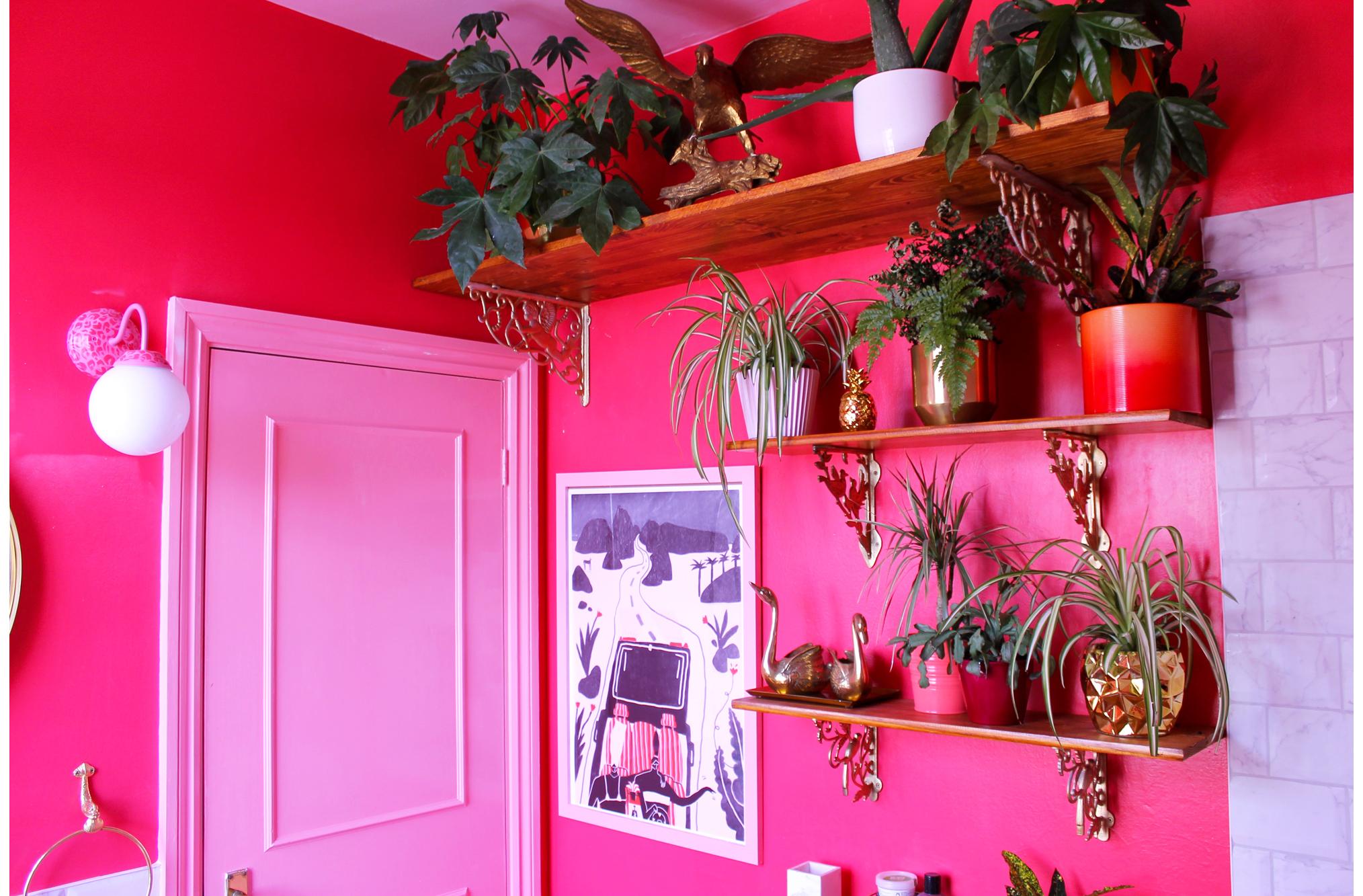 Bathroom Shelves Landscape w border.jpg