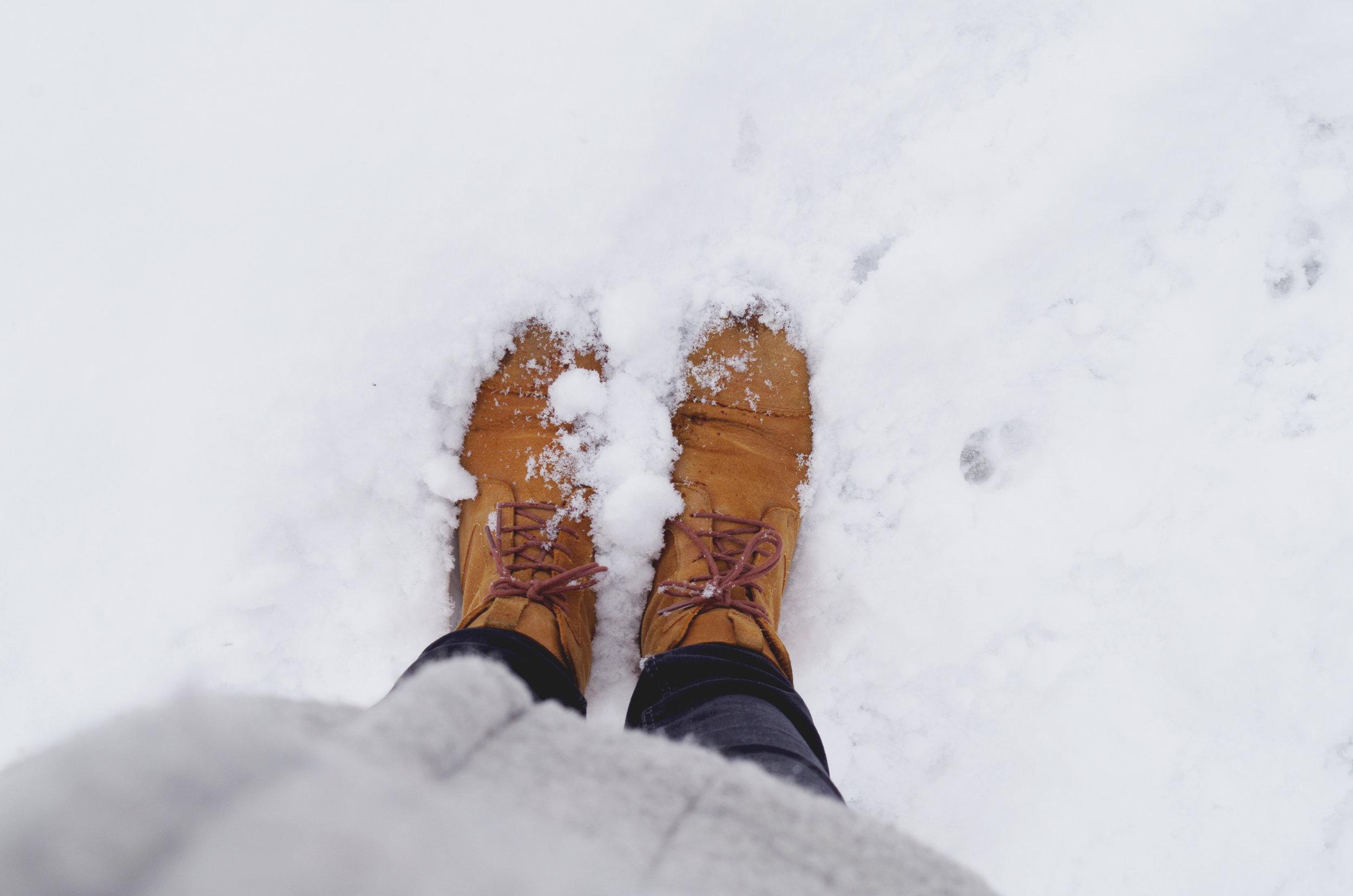 winterwonderland_janinabourosu5.jpg