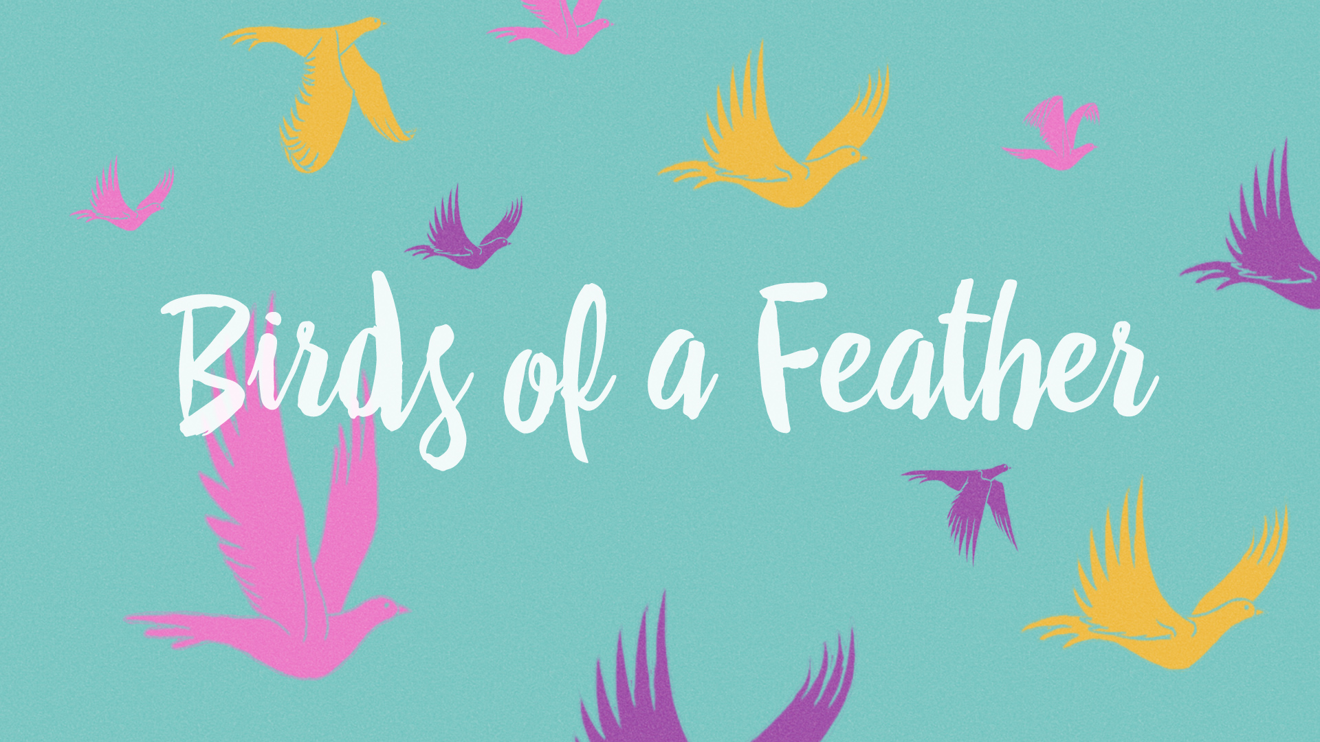 Birds of a Feather - June 2015