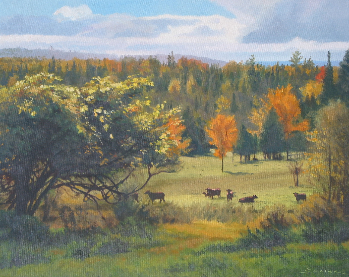 Fall Meadow, 16 x 20, oil